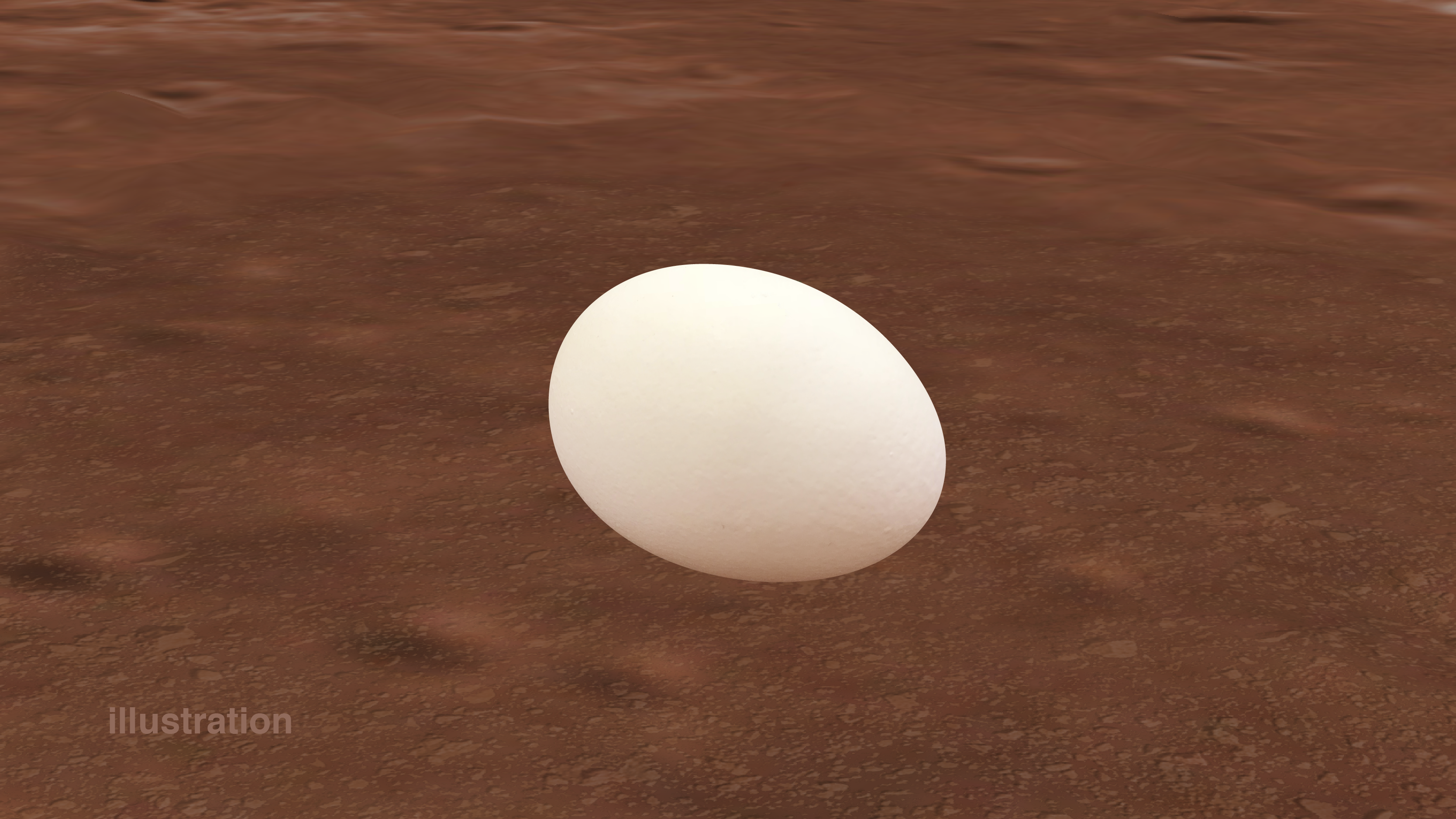 Planetary (Egg) Wobble...