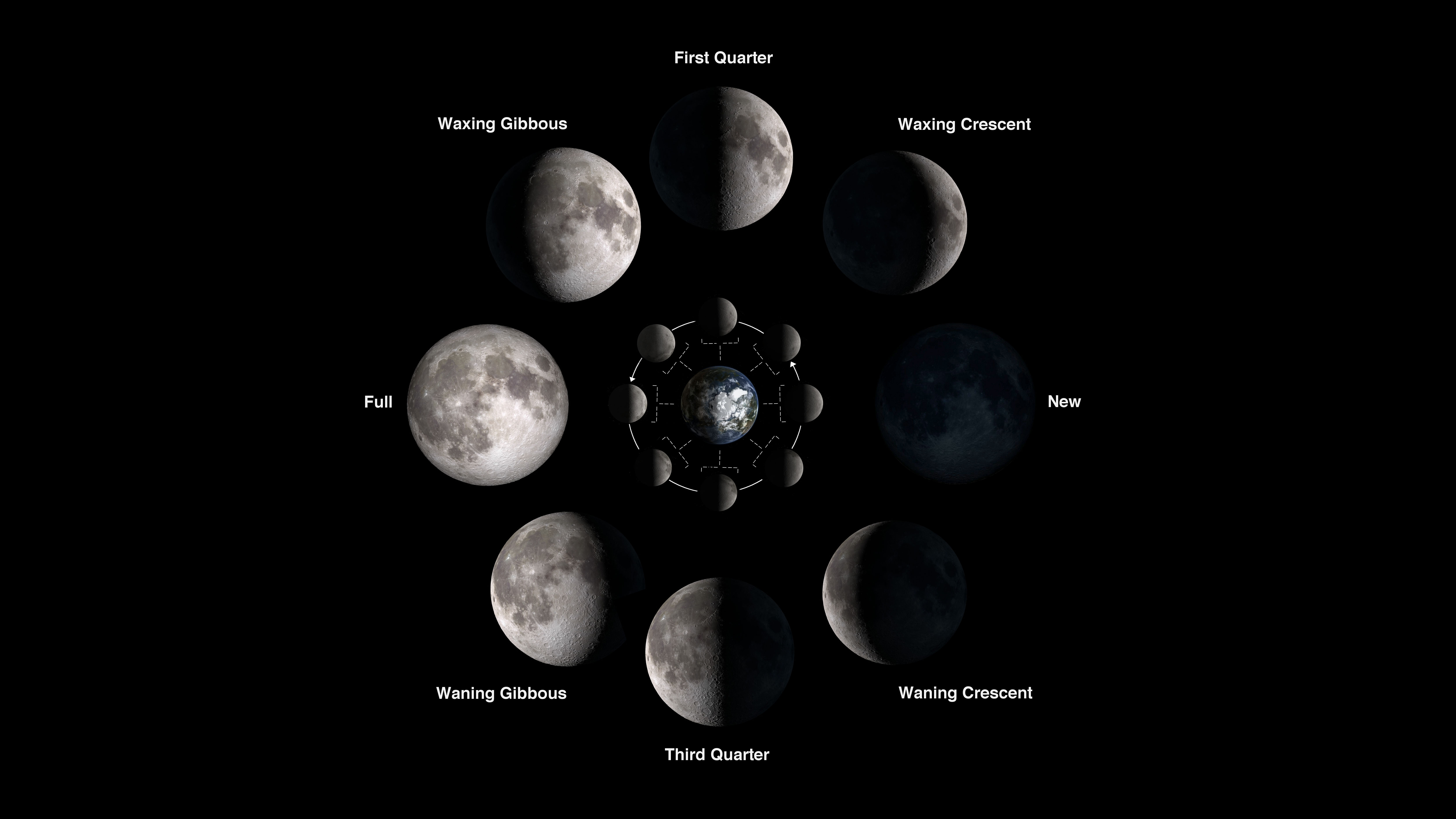 Images of the Moon during each of the eight moon phases are shown in order of their appearance as the Moon orbits Earth with the new moon in the 3-oclock position and the full moon in the 9-oclock position.