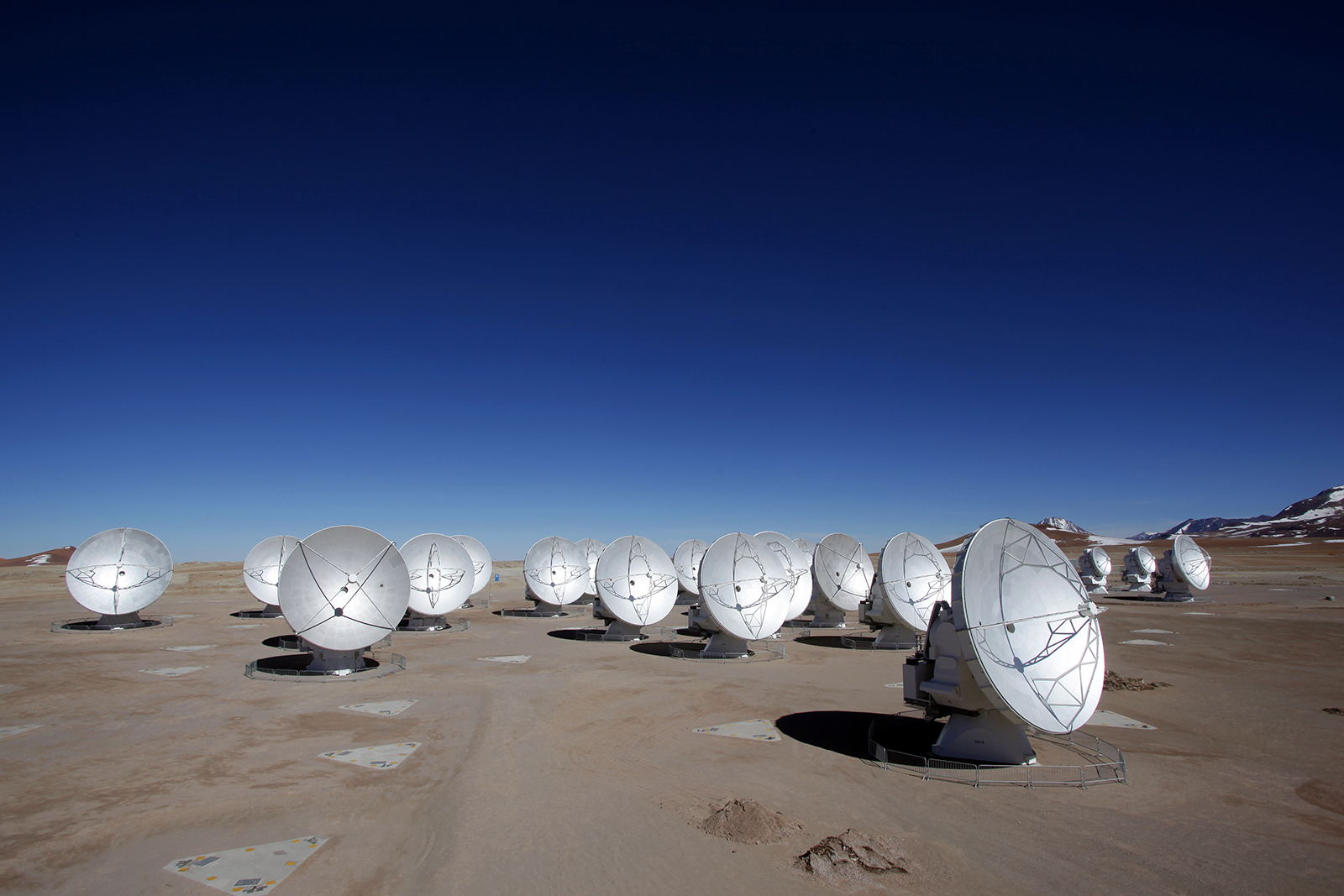 More than a dozen antennas pointing forward sit on barren land surrounded by red and blue-purple mountains in the distance.