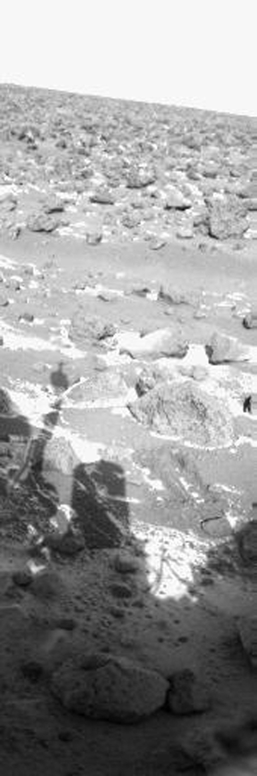 NASA's Viking Lander 2 picture from Utopia Planitia shows the first clear indication of frost accumulation on the Martian surface seen by lander cameras. The season is late winter, Sept. 13, 1977.