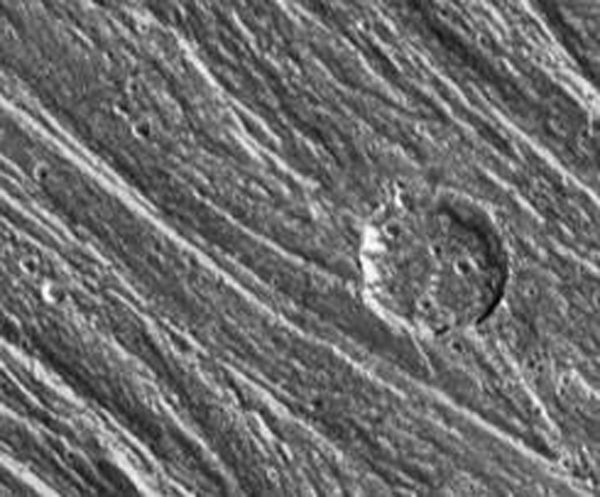 NASA's Galileo spacecraft obtained this image on September 6, 1996 showing grooved terrain in the area of Nippur Sulcus on Jupiter's moon Ganymede.