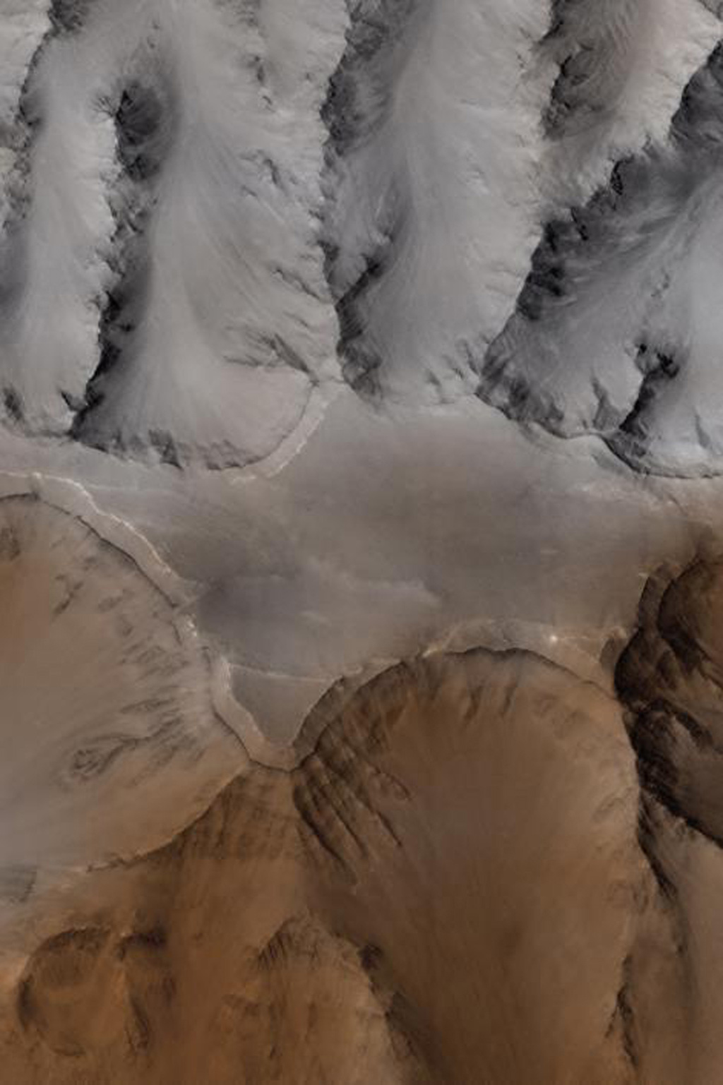 This image acquired by NASA's Mars Global Surveyor on April 13, 1998 shows the Cydonia region on Mars.