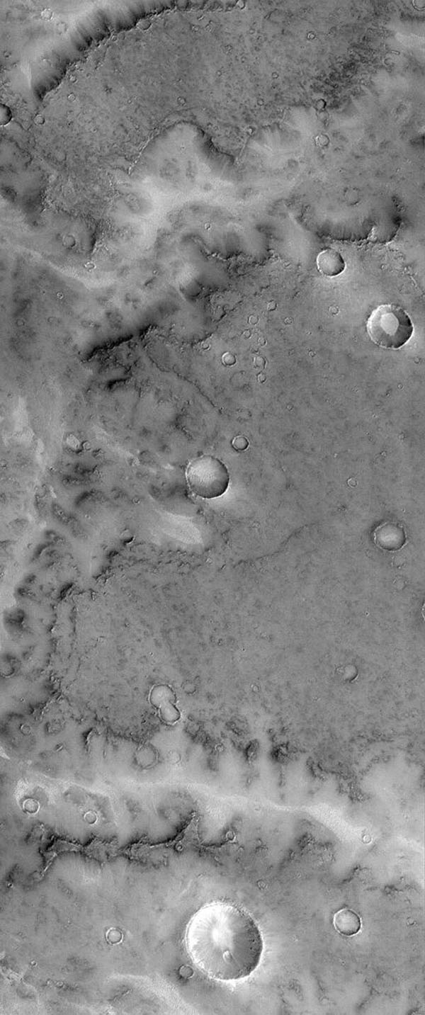 This image from NASA's Mars Global Surveyor taken on April 14, 1998 a portion of a typical valley network system in central Terra Meridiani near the martian Equator and Prime Meridian. The surface into which the valley has formed has a low albedo.
