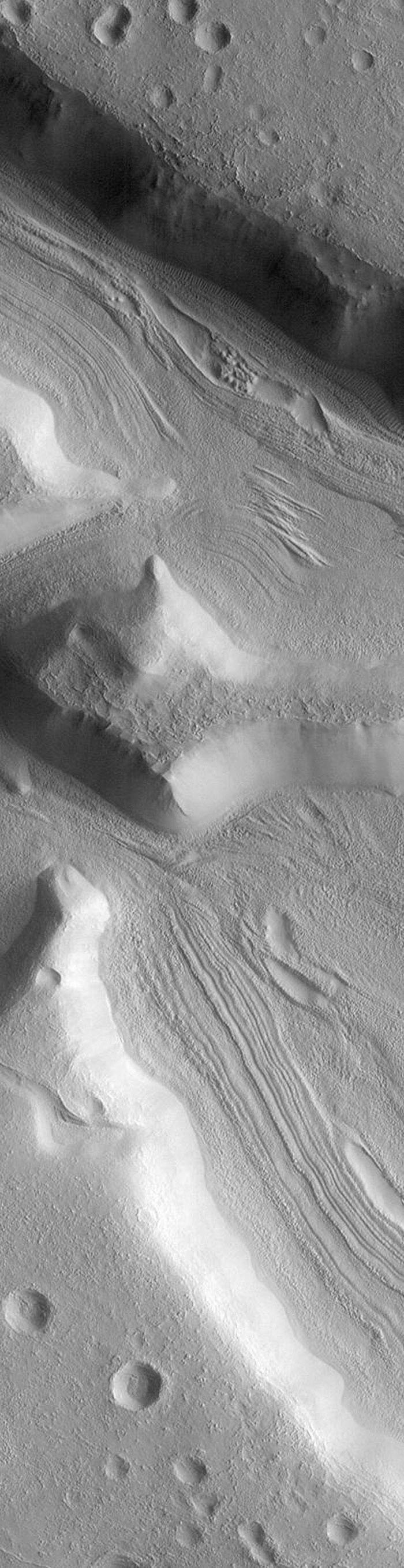 NASA's Mars Global Surveyor took a variety of pictures of the martian fretted terrain, particularly during the months of April through September 1998. This lineated valley shows fill on the floors of some straight, narrow canyons named the Coloe Fossae.
