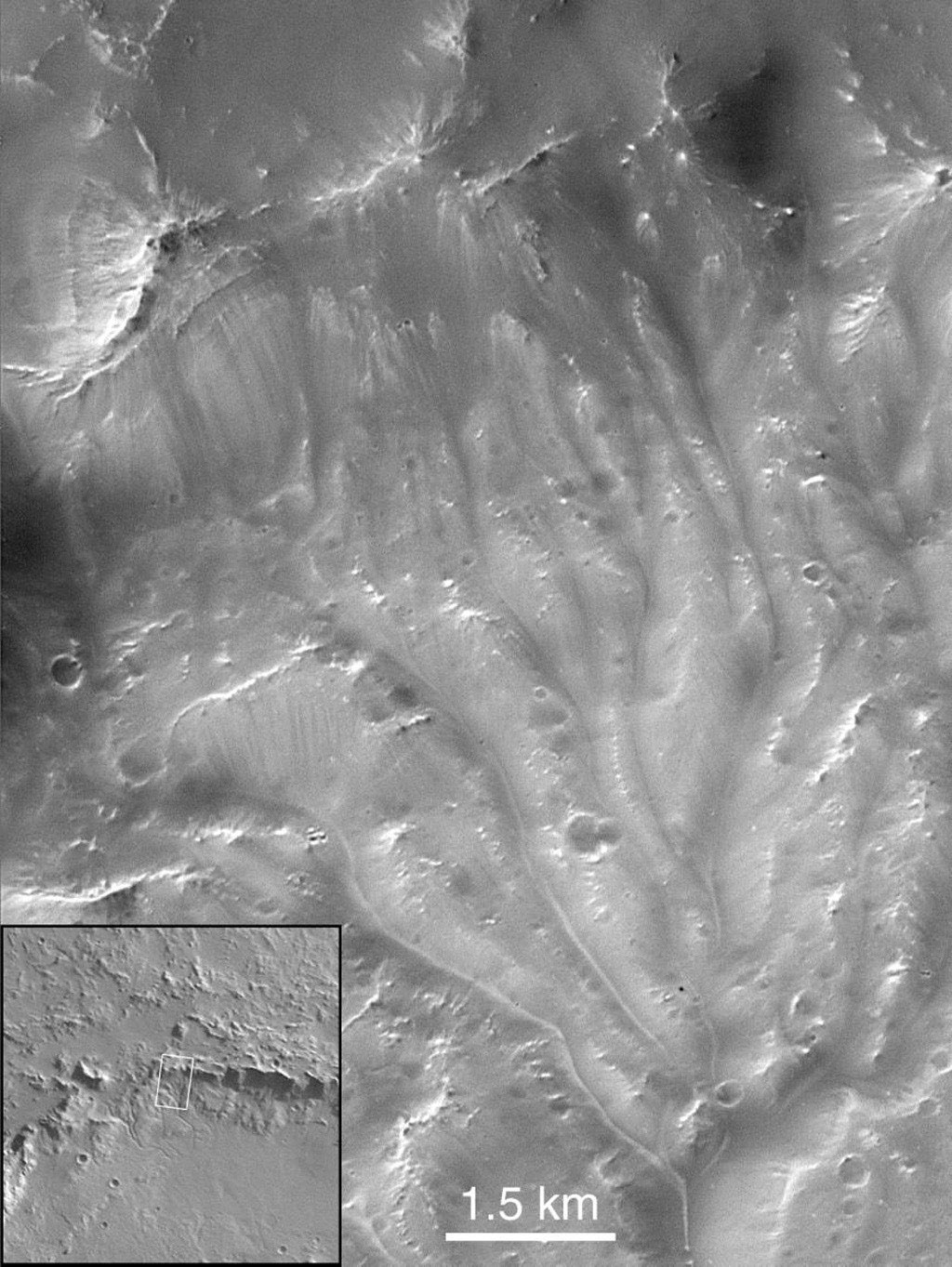 NASA's Mars Global Surveyor shows a portion of channels on the wall of Bakhuysen crater on Mars. These channels are the best examples of integrated drainage reminiscent of terrestrial systems.