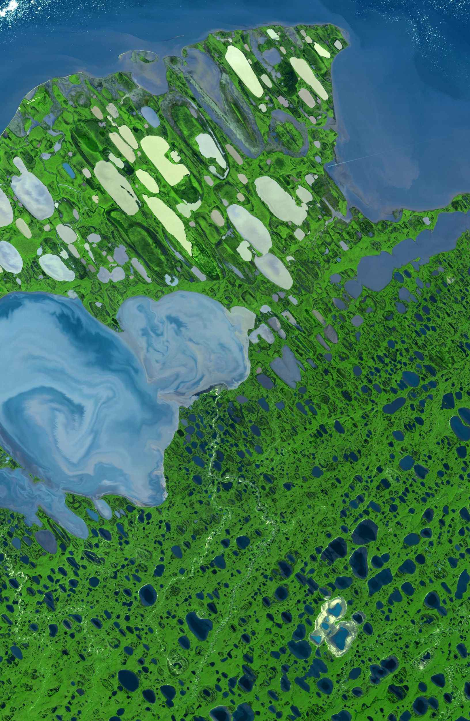This image of Teshekpuk Lake on Alaska's North Slope, within the National Petroleum Reserve, was acquired on August 15, 2000 by NASA's Terra spacecraft.