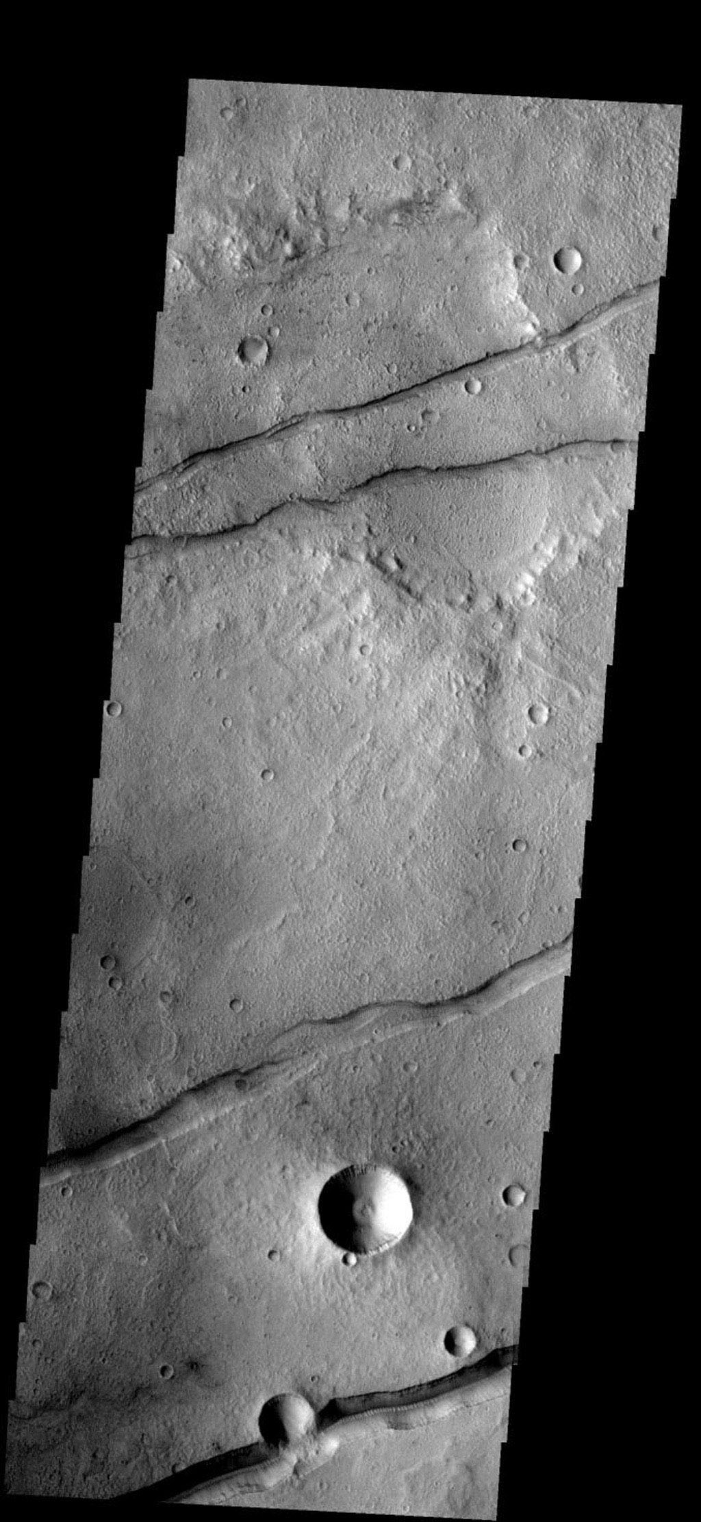 These fractures and graben are part of Sirenum Fossae on Mars as seen by NASA's 2001 Mars Odyssey spacecraft.