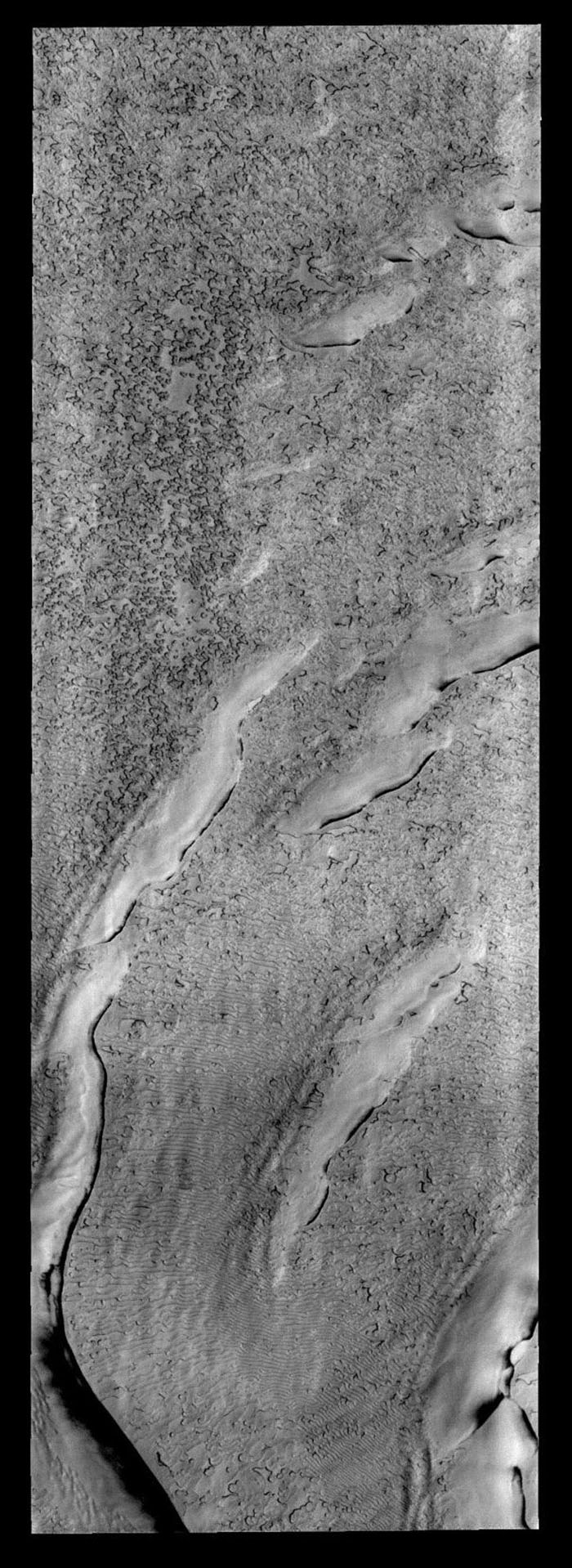 The 'holey' texture of the image captured by NASA's 2001 Mars Odyssey spacecraft of the North Polar cap is called 'swiss-cheese,' while the linear texture at the bottom of the frame is called 'thumbprint terrain.'