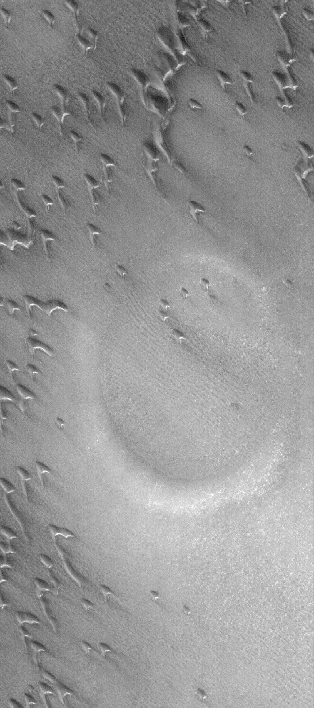 This image from NASA's Mars Global Surveyor shows a partially-buried crater in the north polar region of Mars. A circular feature is surrounded and partly overlain by some of the many, many sand dunes in the area.