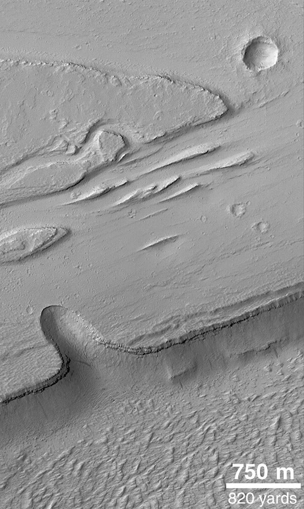 NASA's Mars Global Surveyor shows the Olympica Fossae, a complex array of deep troughs, channels and streamlined landforms in northern Tharsis. Water, mud, and lava are all thought to have played a role in the formation of these features.