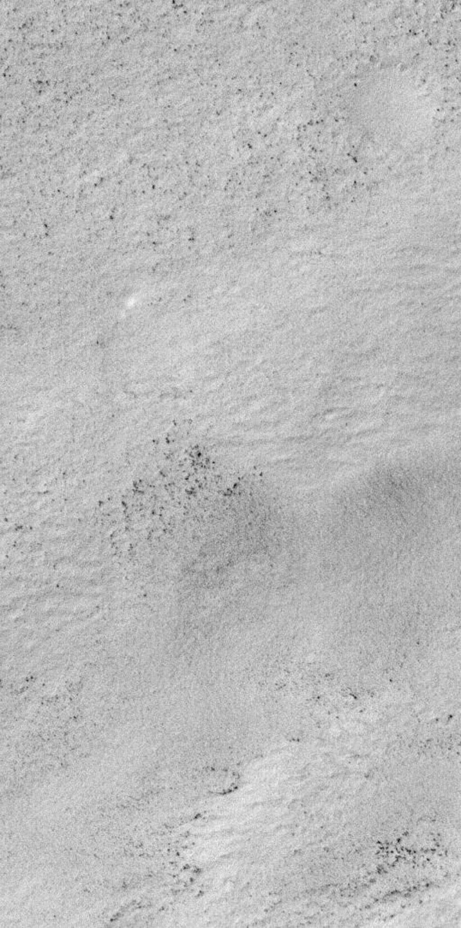 NASA's Mars Global Surveyor shows a snow-covered surface located on Malea Planum, south of the giant Hellas impact basin on Mars.