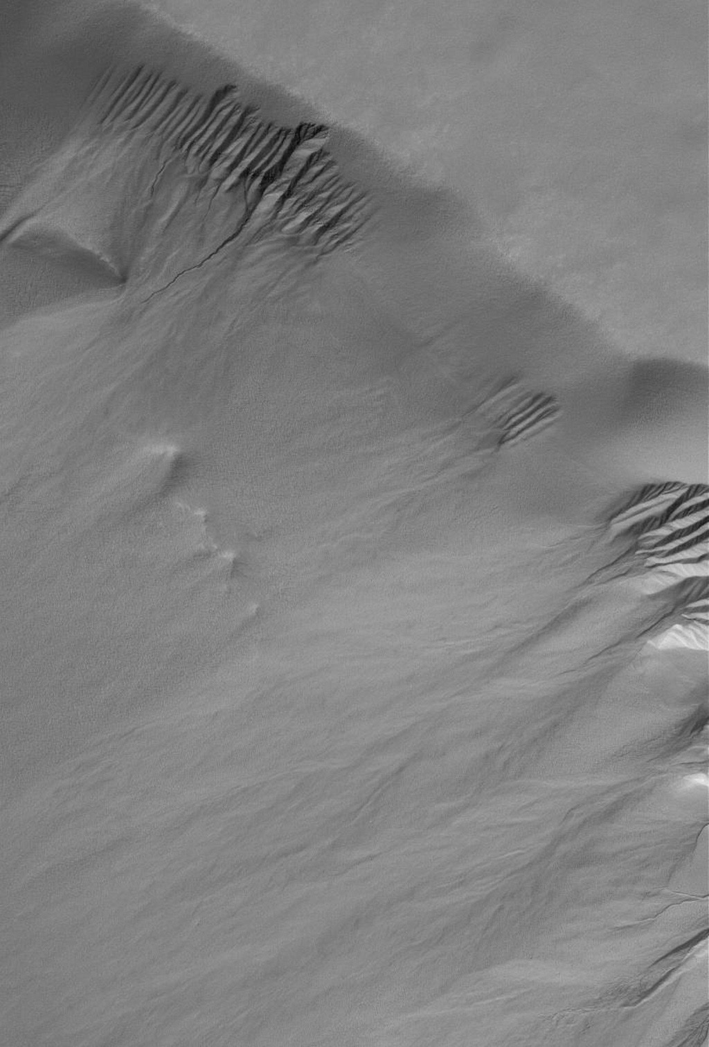 This image from NASA's Mars Global Surveyor spacecraft shows a suite of gullies on a scarp in Lyell Crater.
