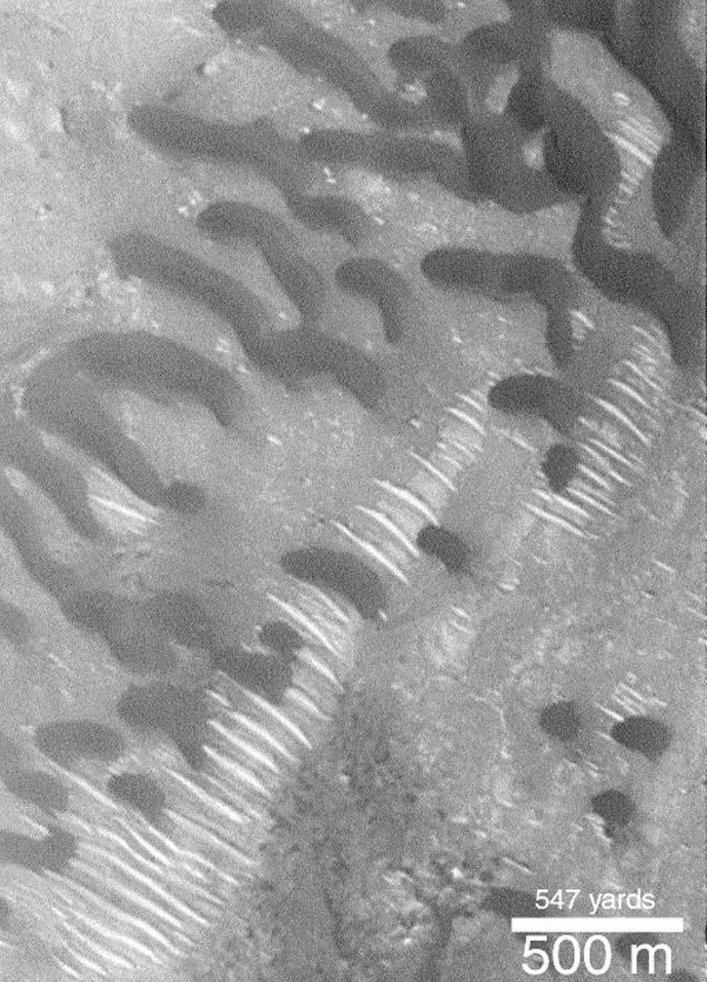 NASA's Mars Global Surveyor shows dark and somewhat crescent-shaped dunes on Mars.