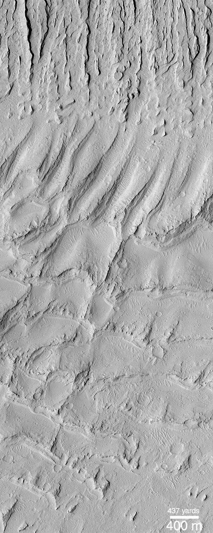NASA's Mars Global Surveyor shows field of parallel ridges north of a dune field in a wind-eroded material named the Apollinaris Sulci.