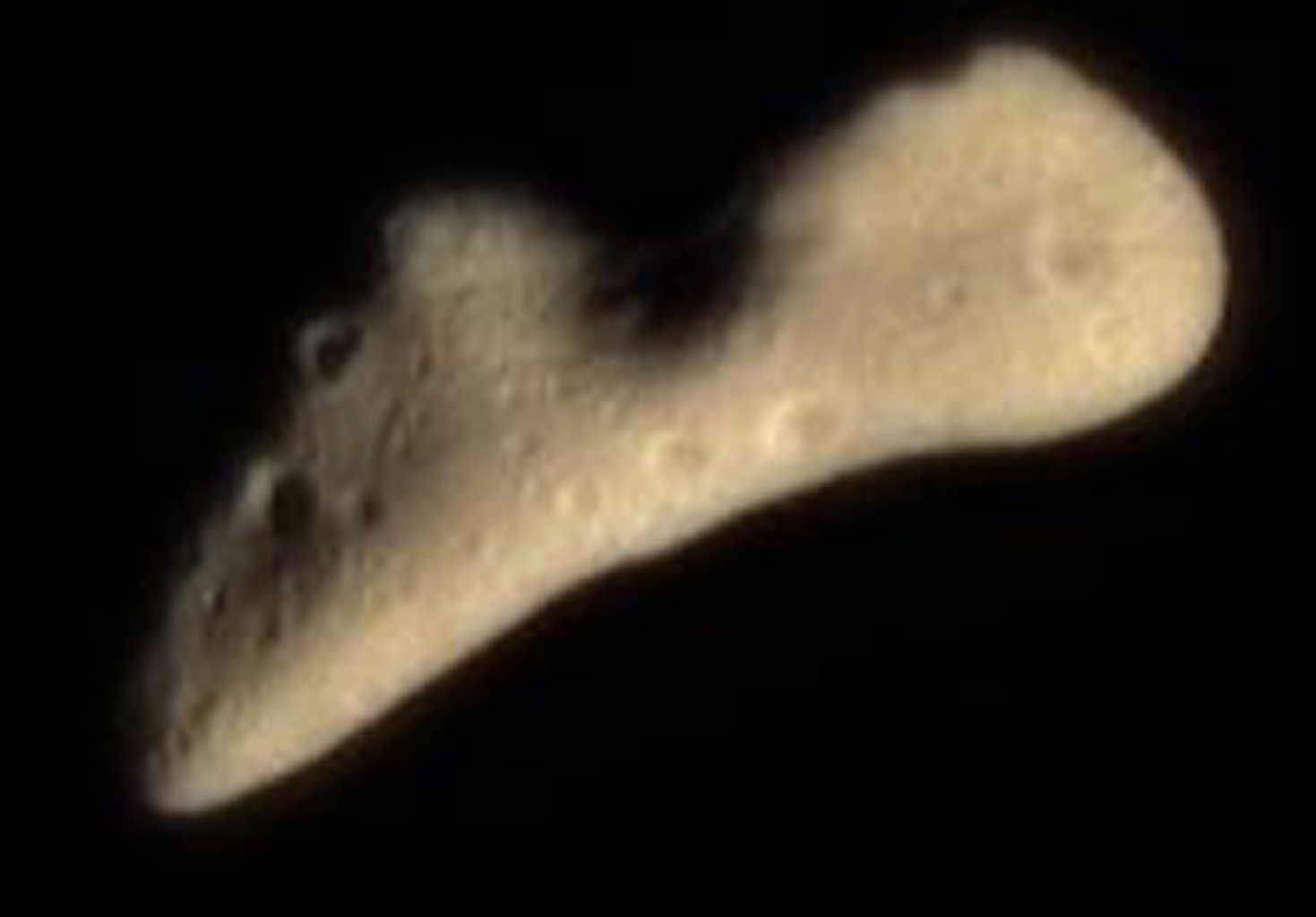 This color image taken by NASA's NEAR Shoemaker spacecraft on Feb 12, 2000, shows the subtle butterscotch hue is typical of a wide variety of minerals thought to be the major components of asteroids like Eros.