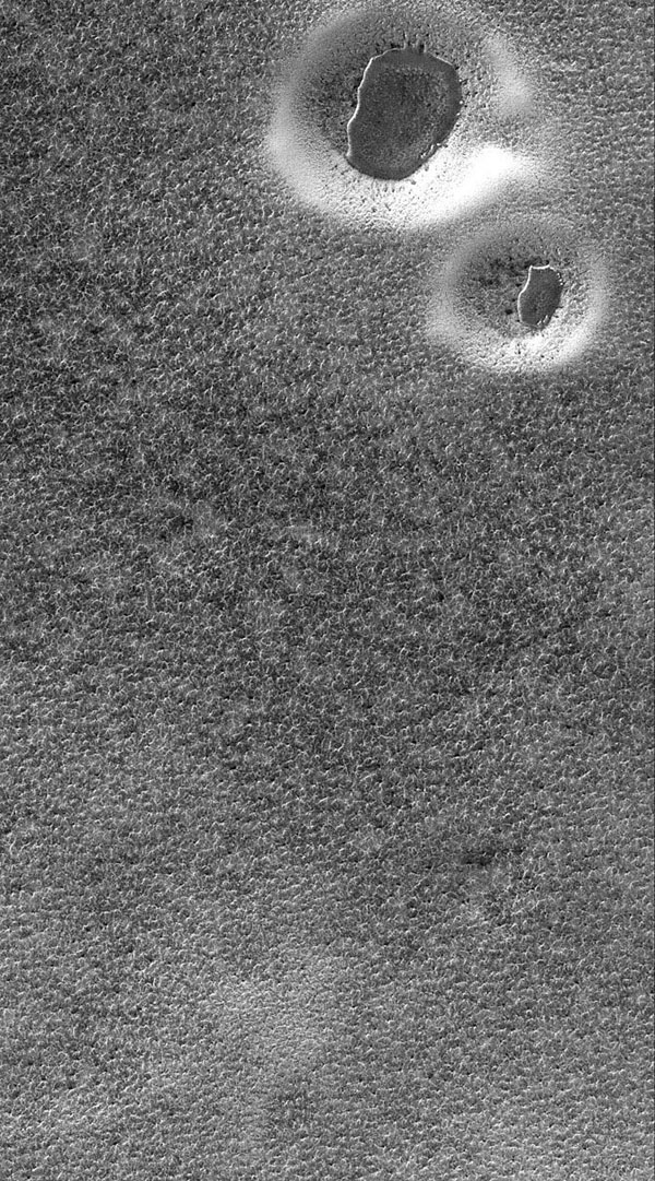 NASA's Mars Global Surveyor shows two circular features in the south polar region of Mars. The circular features are degraded impact craters. The dark, irregular features in each crater are the remnants of a layer of material.