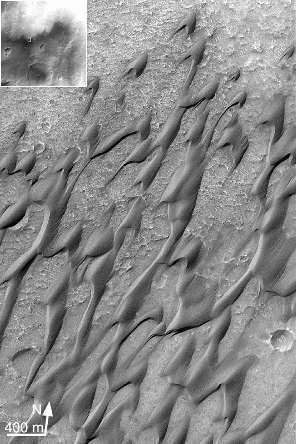 NASA's Mars Global Surveyor shows erosional streaks on dunes Herschel Crater on Mars which means that the dunes are indurated (cemented).