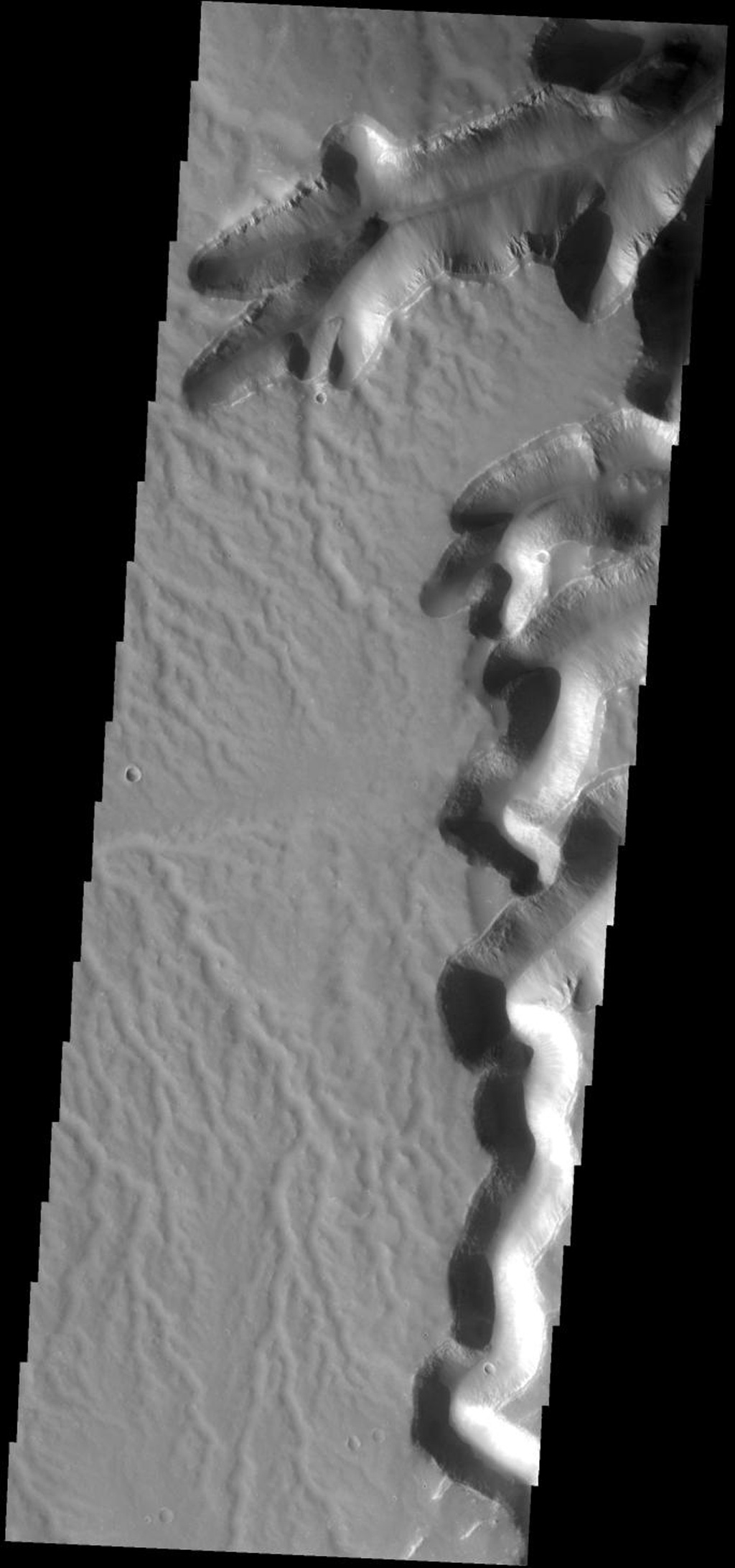 At the southern end of Echus Cansma on Mars this dissected surface and mega-gullies occur as seen by NASA's 2001 Mars Odyssey spacecraft.