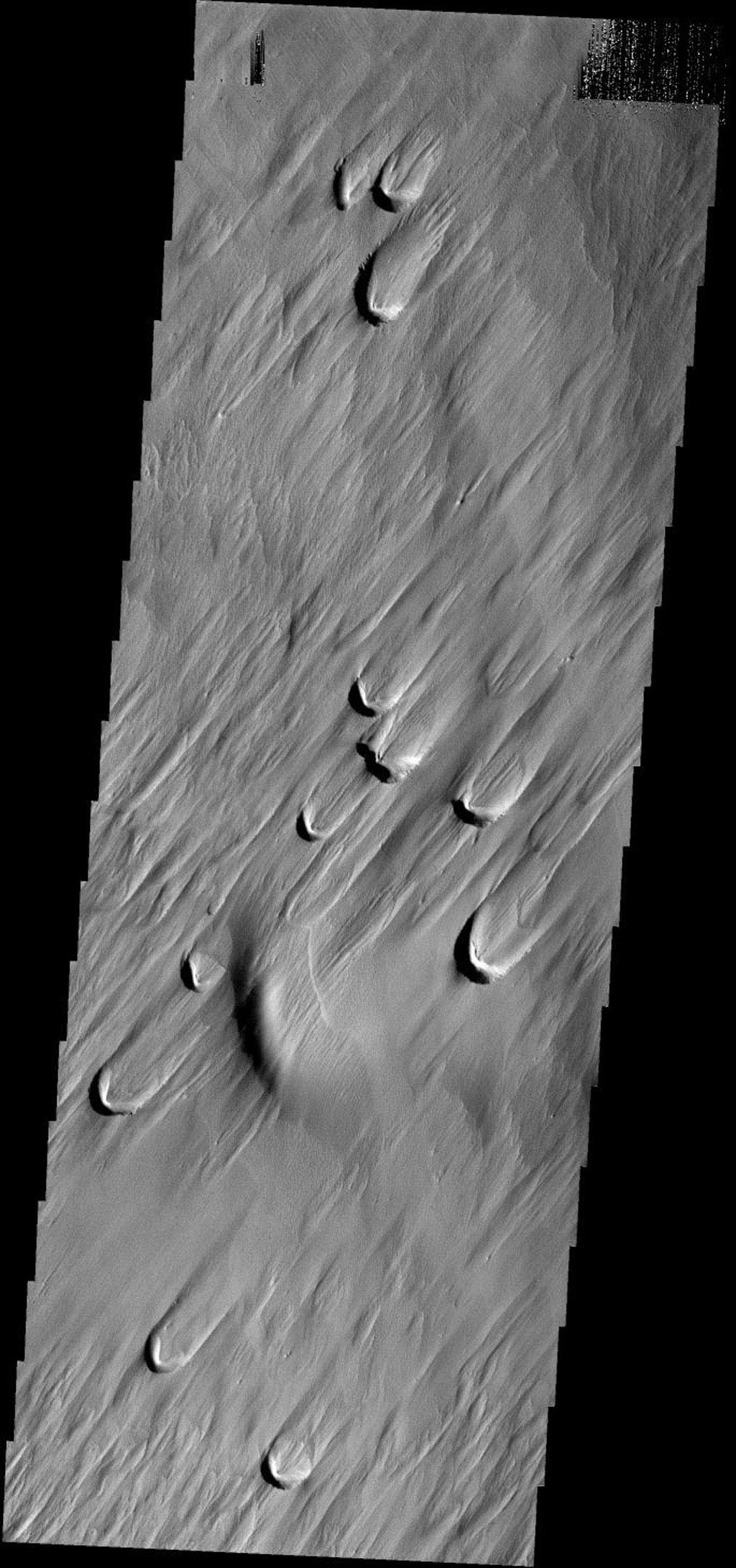 The dark crescents in this image from NASA's Mars Odyssey spacecraft are the backside of wind blowout features. Blowouts are common on Earth in beach regions and in the American MidWest.