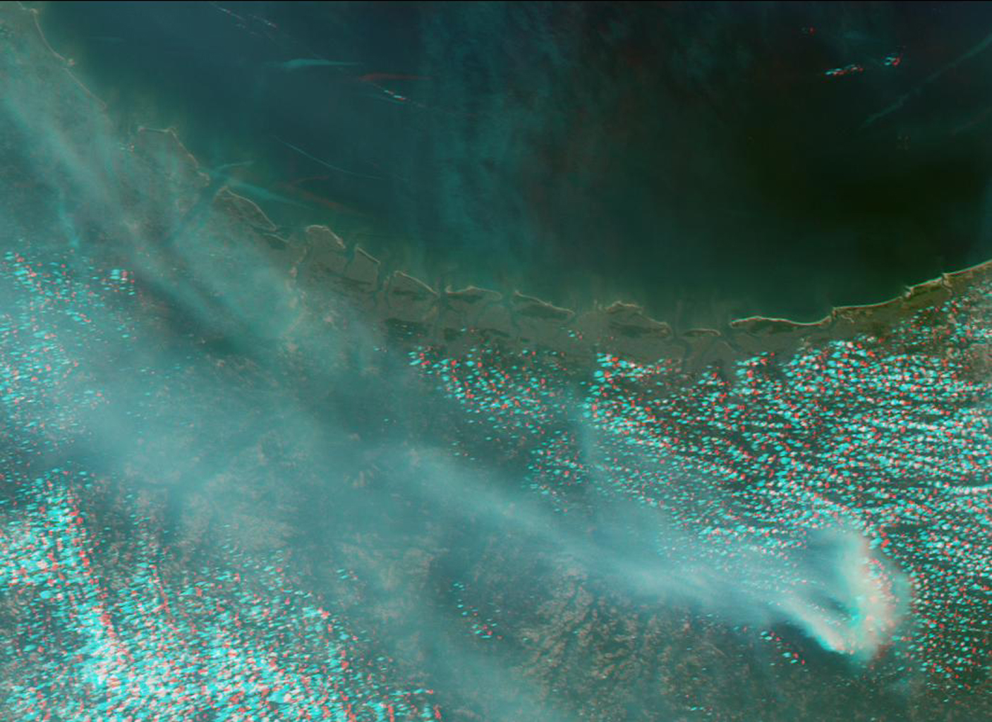 Large smoke plumes were produced by the Blackjack complex fire in southeastern Georgia's Okefenokee Swamp as seen by the MISR instrument aboard NASA's Terra spacecraft May 8, 2002. 3D glasses are necessary to view this image.