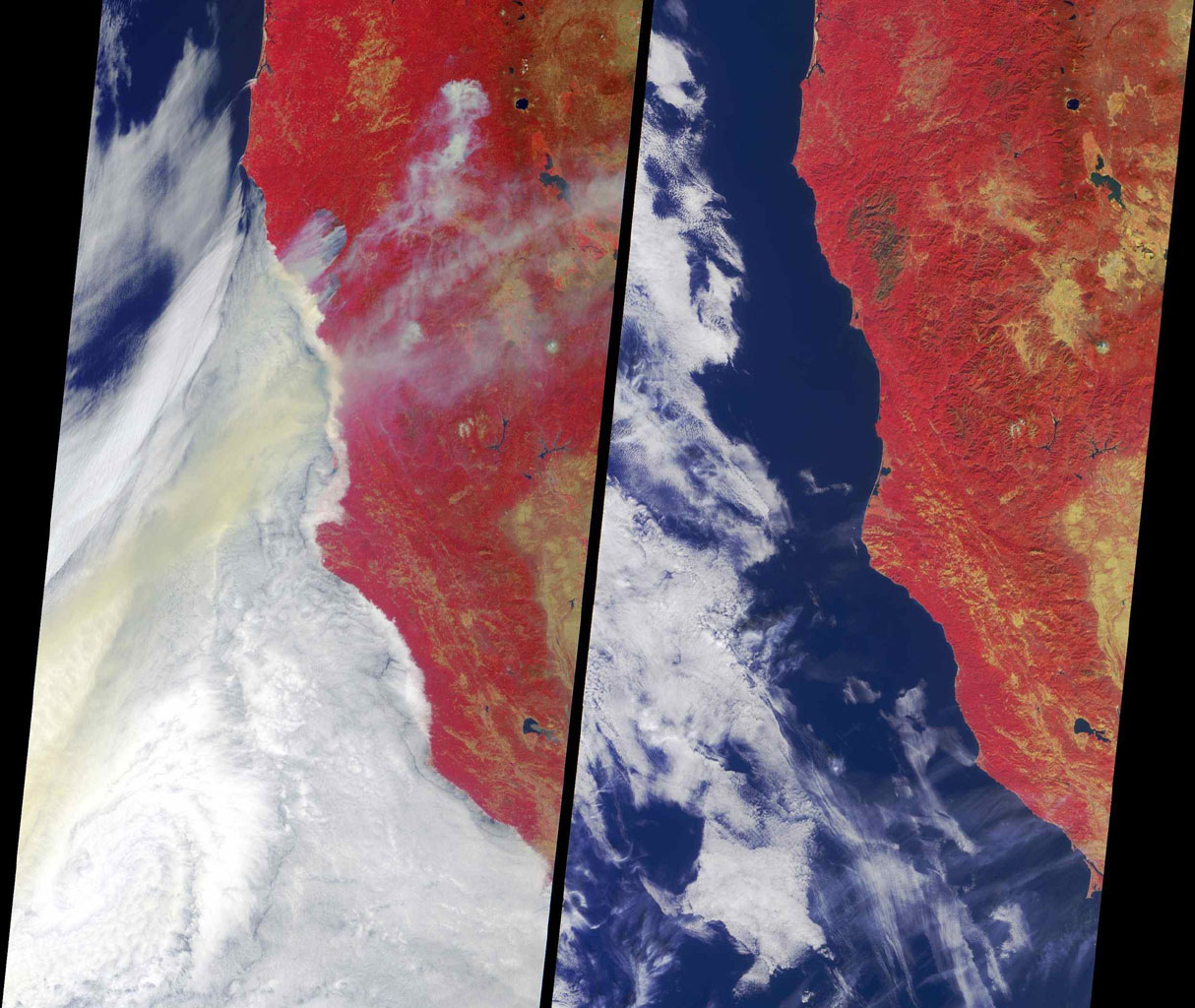 Ignited by lightning strikes during a record-breaking heat wave, the Biscuit Fire became Oregon's largest wildfire of the past century. NASA's Terra spacecraft  acquired these image between mid July and early September 2002.