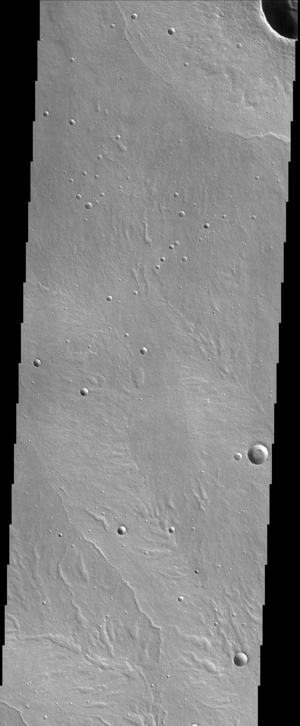 This NASA Mars Odyssey image shows a portion of a volcano called Alba Patera. This region has many unique valley features that at first glance look much like the patterns formed by rivers and tributaries on Earth, but are actually quite discontinuous.