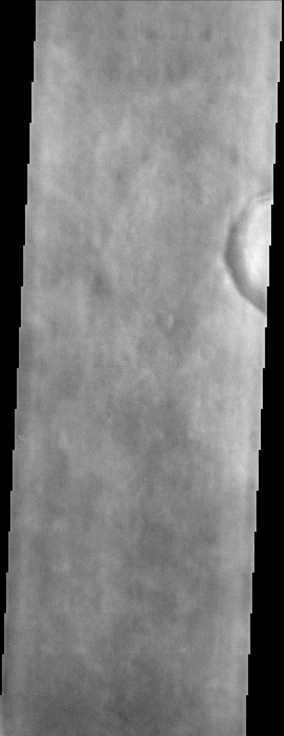 Splotchy water ice clouds obscure the surface in this image from NASA's Mars Odyssey spacecraft, however, most of Mars was in a relatively clear period when this image was acquired.