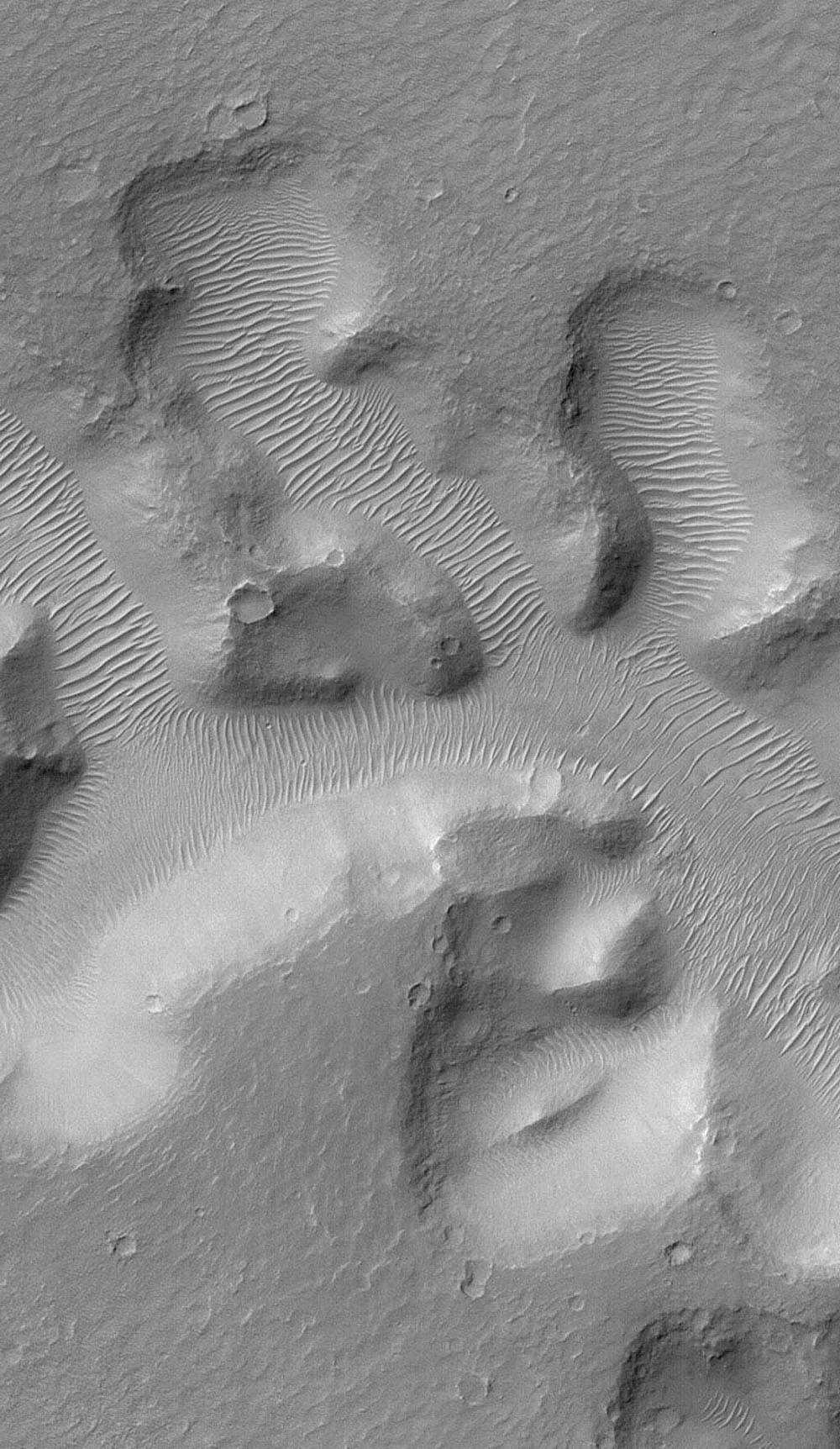 NASA's Mars Global Surveyor shows Nirgal Vallis, a narrow valley system across the martian surface near 28°S latitude, north of the large basin, Argyre. The floor of the valley system is largely covered with light-toned dunes and ripples.