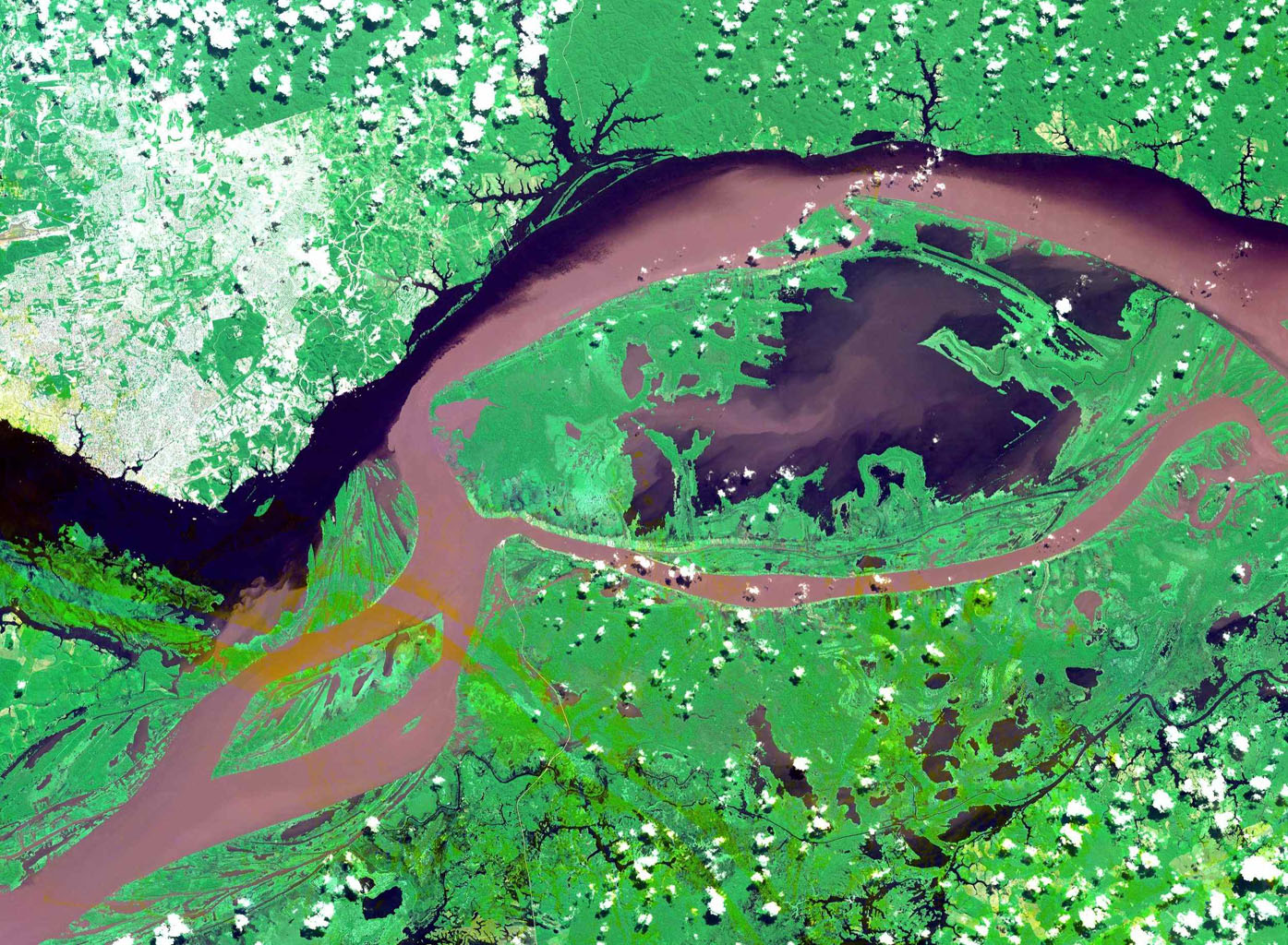 This image from NASA's Terra spacecraft shows the junctions of the Amazon and the Rio Negro Rivers at Manaus, Brazil.