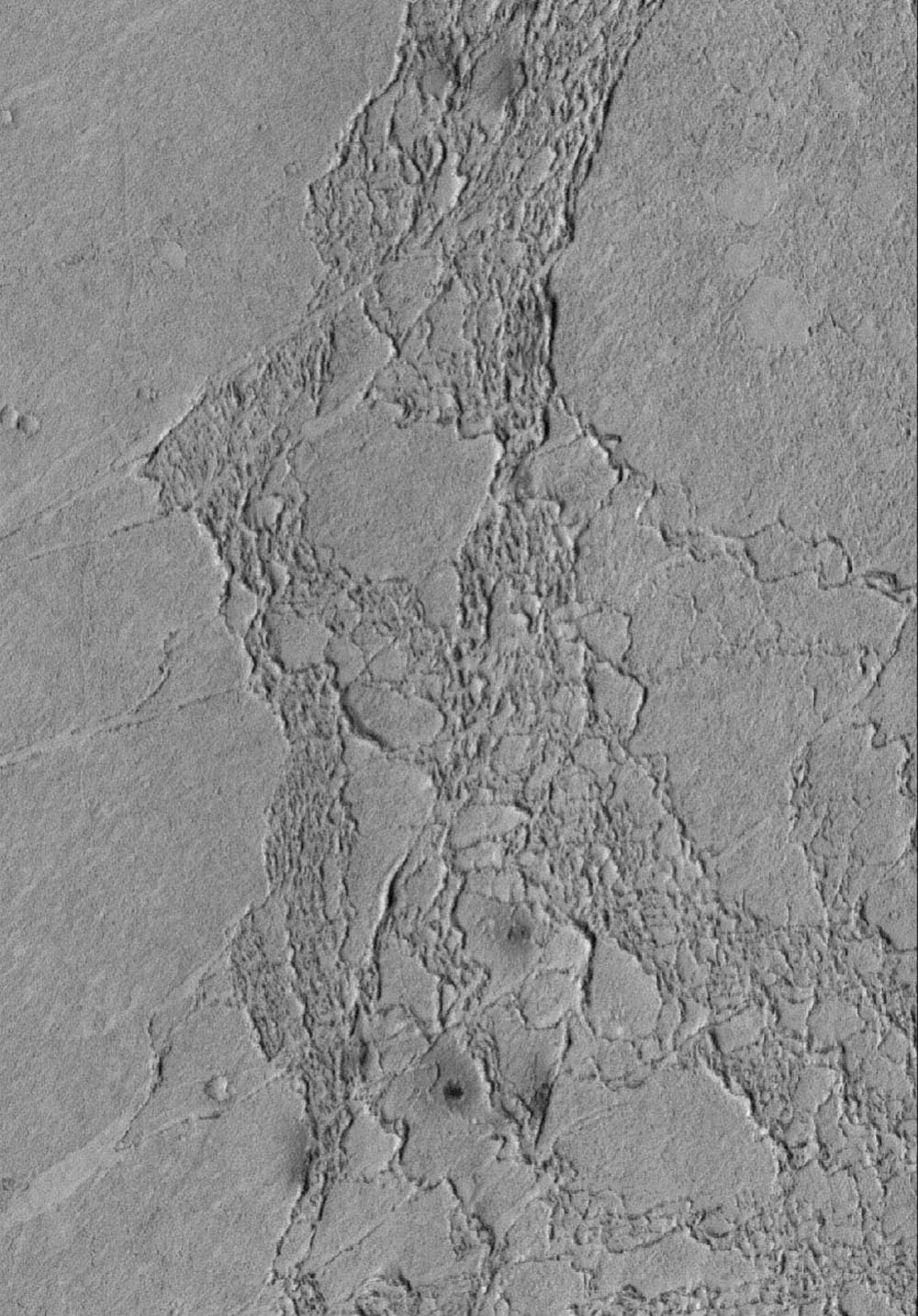 NASA's Mars Global Surveyor shows some of the platy flow material in the Zephyria region of Mars. The materials have impact craters in them, suggesting that they are composed of solid rock rather than ice.