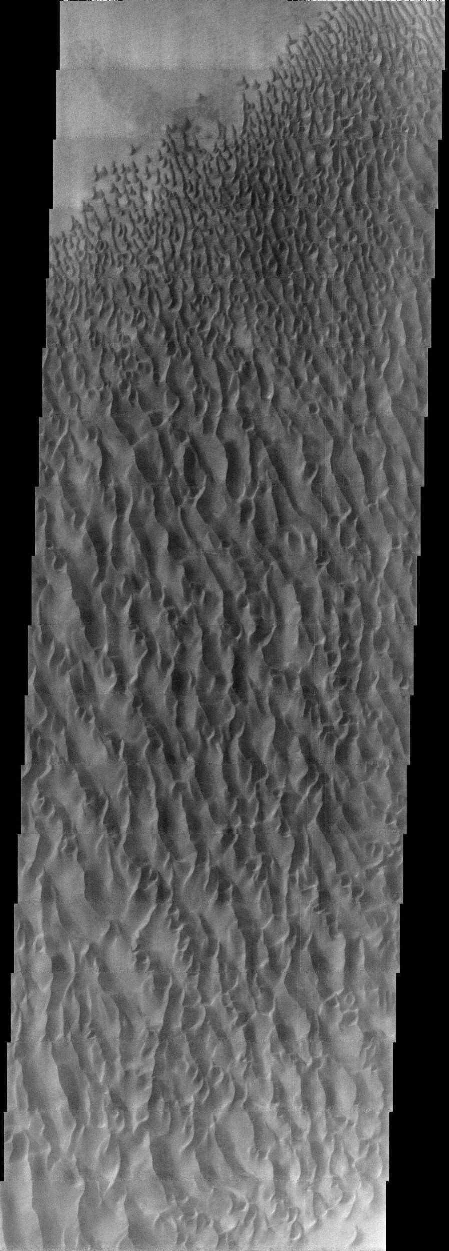 This image from NASA's Mars Odyssey spacecraft displays sand dunes within Proctor Crater. These dunes are composed of basaltic sand that has collected in the bottom of the crater.