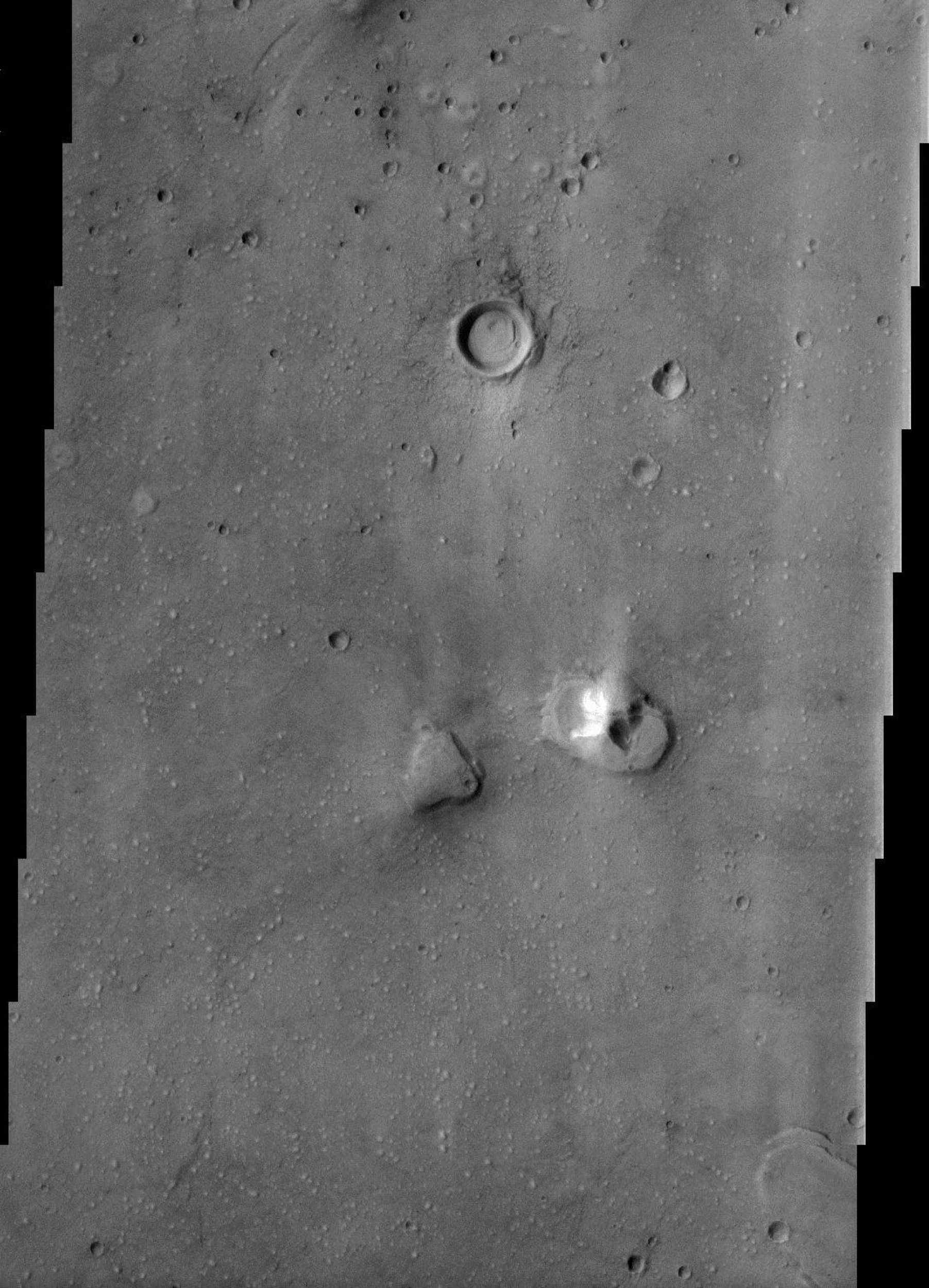 This image from NASA's Mars Odyssey spacecraft of the northern plains of Mars shows a surface texture of hundreds of small mounds and numerous small impact craters.