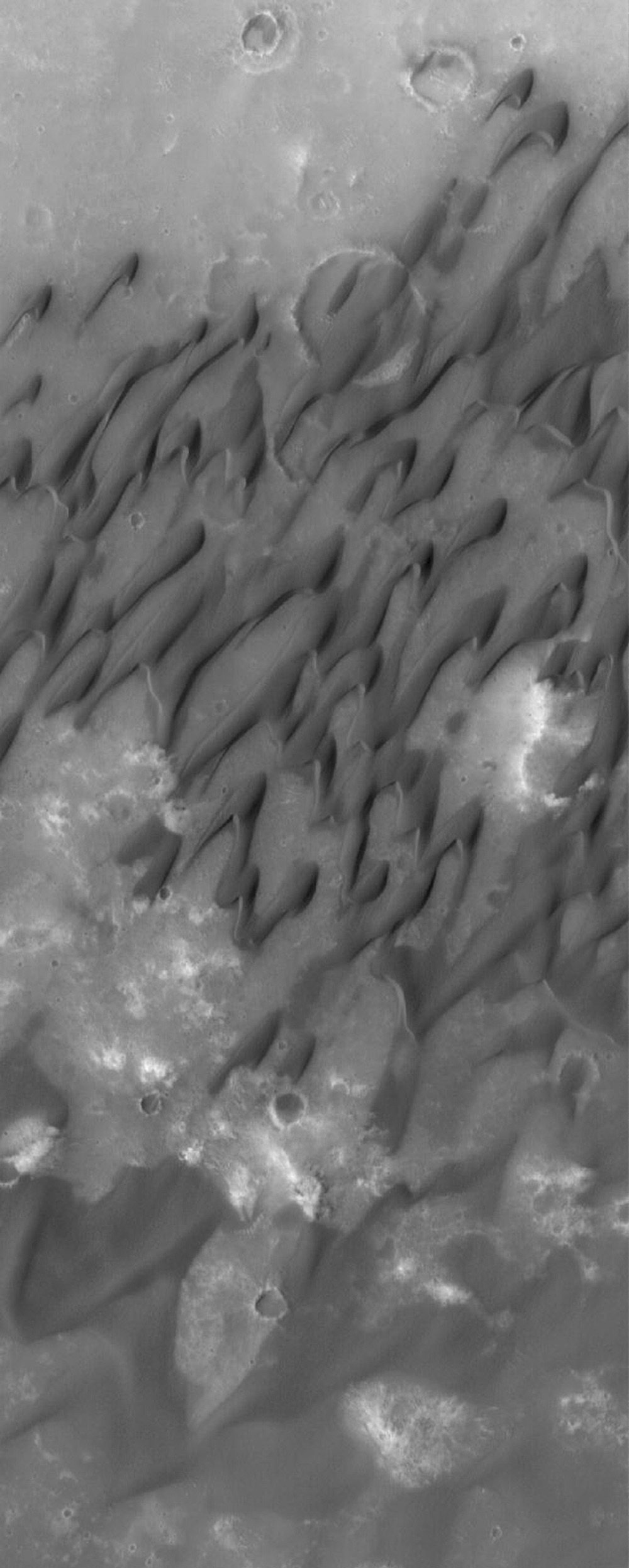 NASA's Mars Global Surveyor shows dark-toned sand dunes on the floor of the large martian impact crater, Herschel, located in the Terra Cimmeria region of Mars.