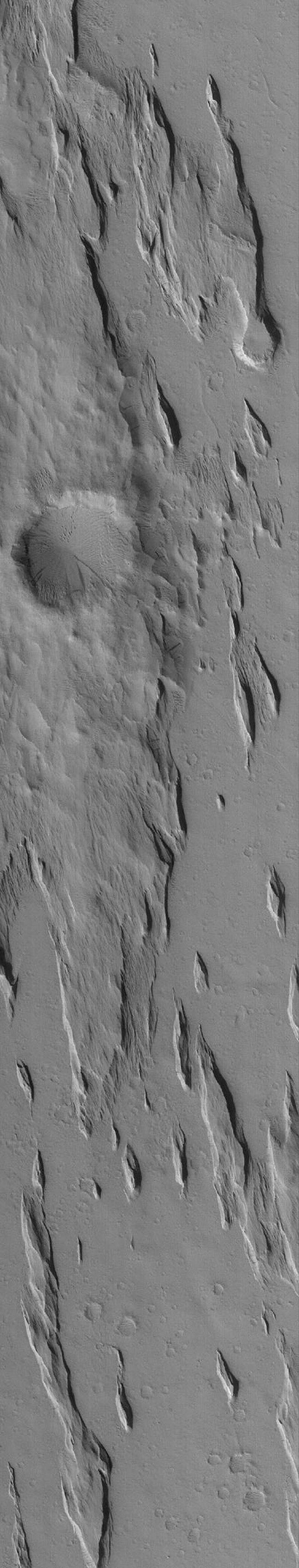 NASA's Mars Global Surveyor shows yardangs, a typical ridge pattern formed by wind erosion, in southern Amazonis on Mars.