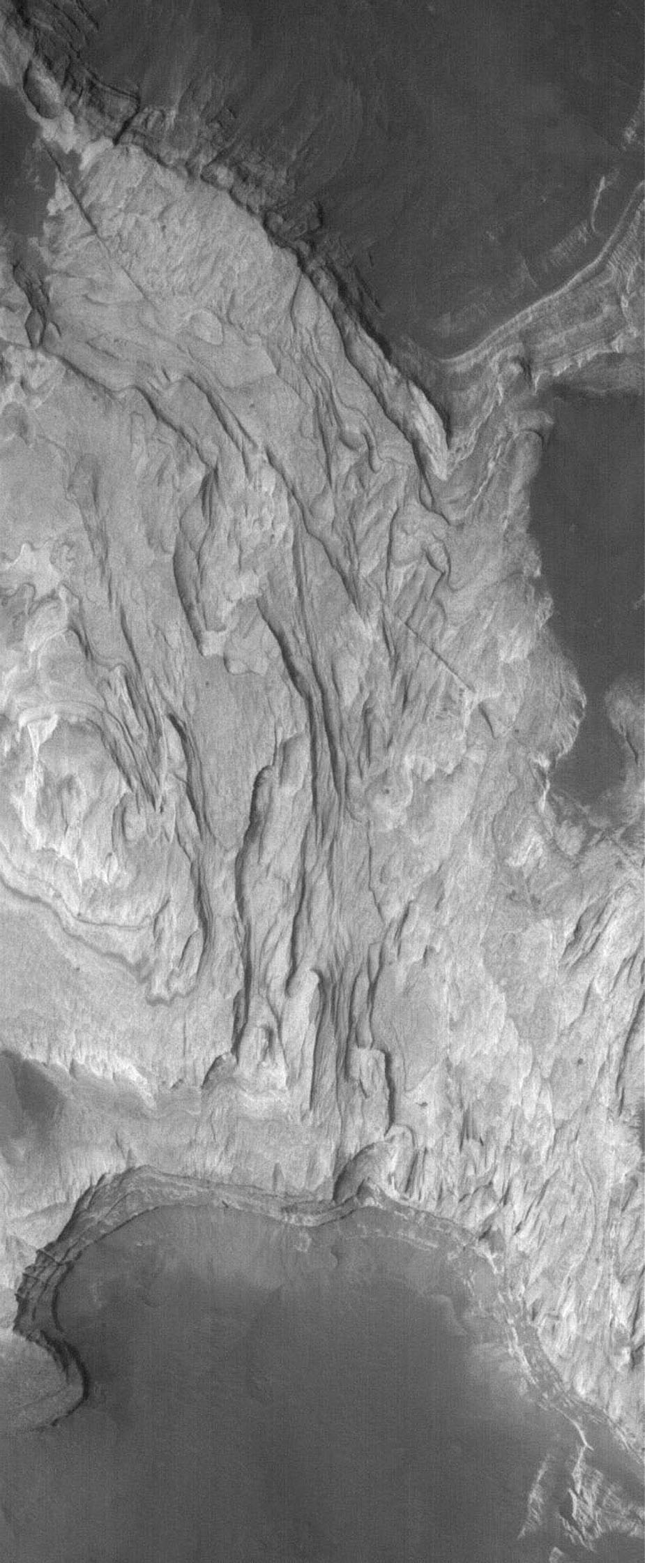 NASA's Mars Global Surveyor shows light-toned, layered, sedimentary rocks exposed by erosion in Terby Crater, located on the north rim of the Hellas Basin. Sedimentary rocks are common on Mars.