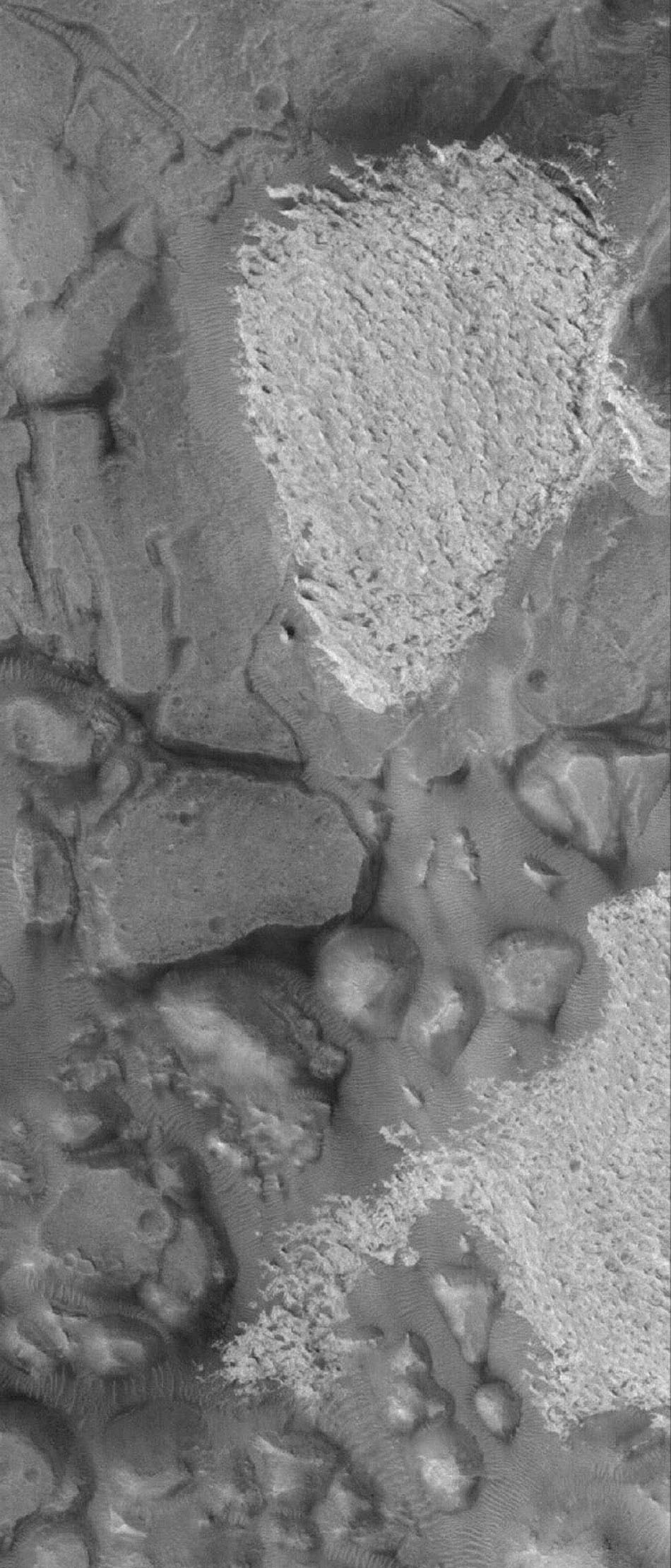 NASA's Mars Global Surveyor shows outcrops of light-toned, sedimentary rock among darker-toned mesas in Aram Chaos on Mars. Dark, windblown megaripples -- large ripples -- are also present at this location.