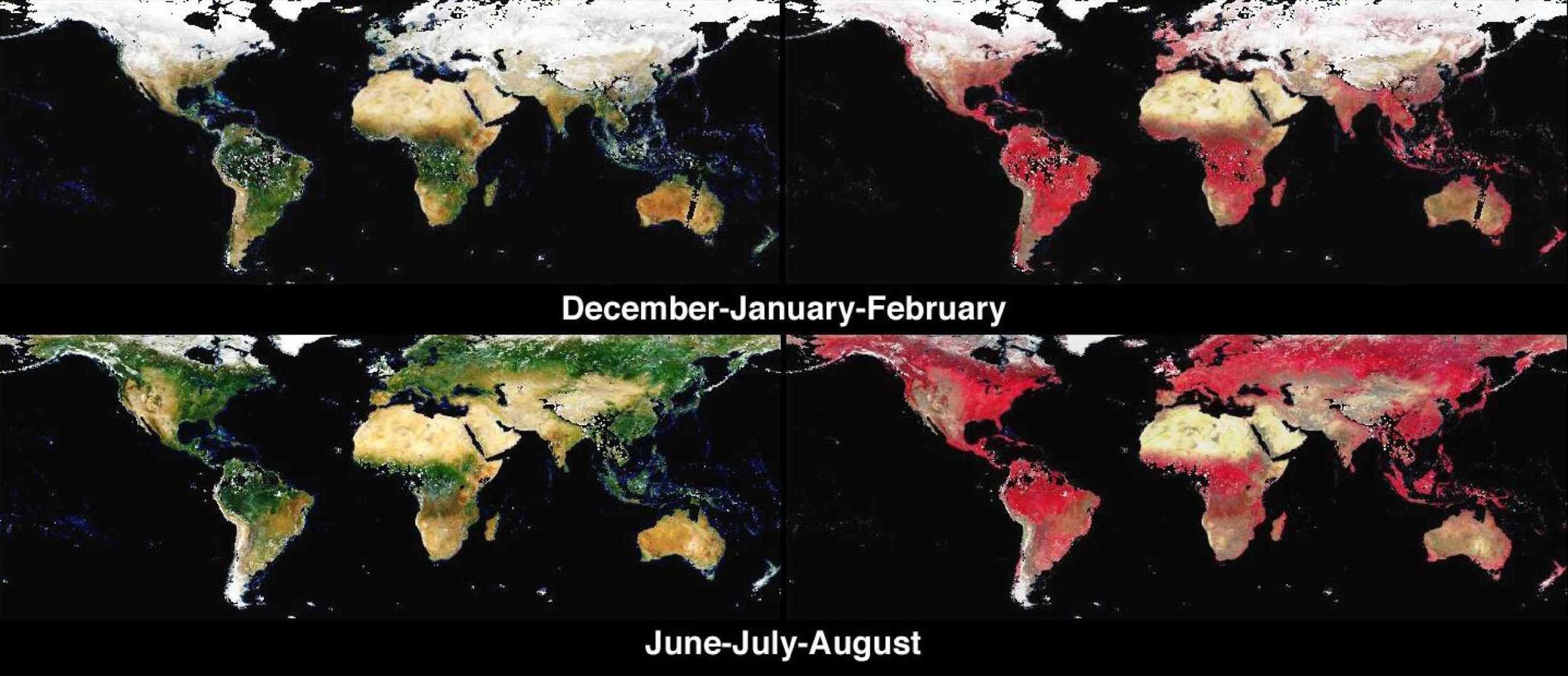 earths surface alb seasonal - 1438×620