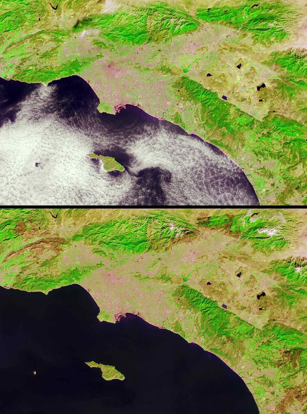 Brush fires consumed nearly 750,000 acres across Southern California between October 21 and November 18, 2003. Burn scars and vegetation changes wrought by the fires are illustrated in these false-color images from NASA's Terra spacecraft.