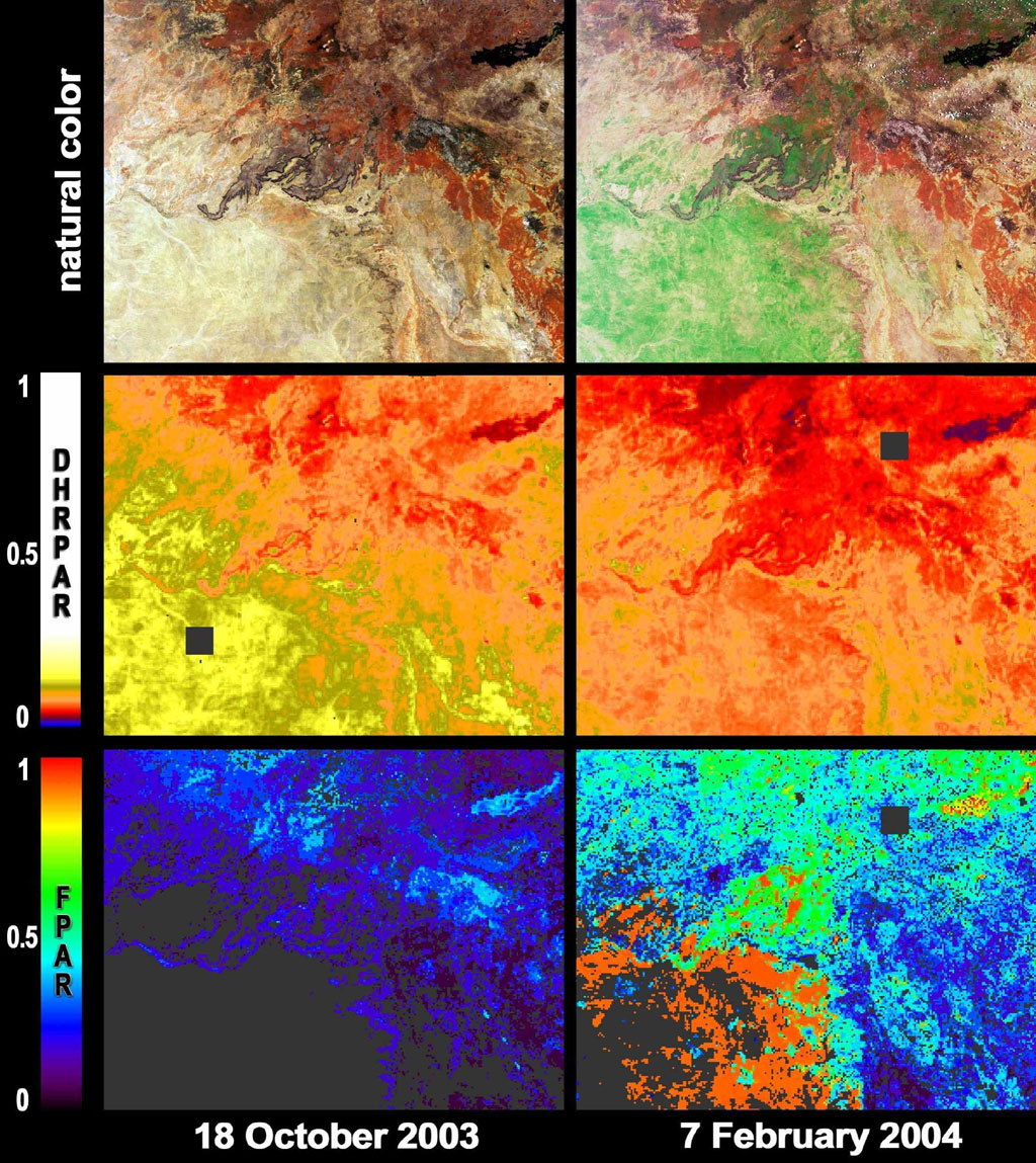 After a 19 month rainfall deficiency, heavy rainfall during January 2004 brought drought relief to much of northern Queensland; these images were acquired by NASA's Terra spacecraft.