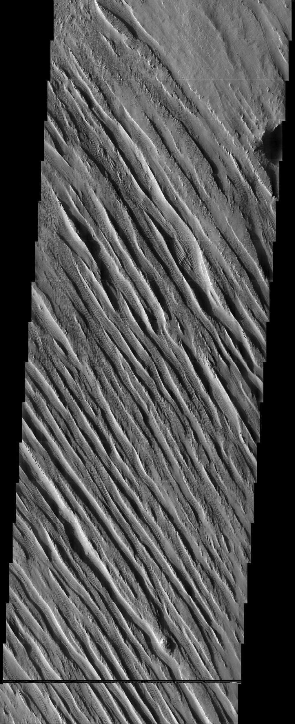 The wind-sculpted yardangs in this scene from NASA's Mars Odyssey spacecraft are part of the Medusae Fossae Formation, a regionally extensive geologic unit that probably was produced from the accumulation of volcanic ash.