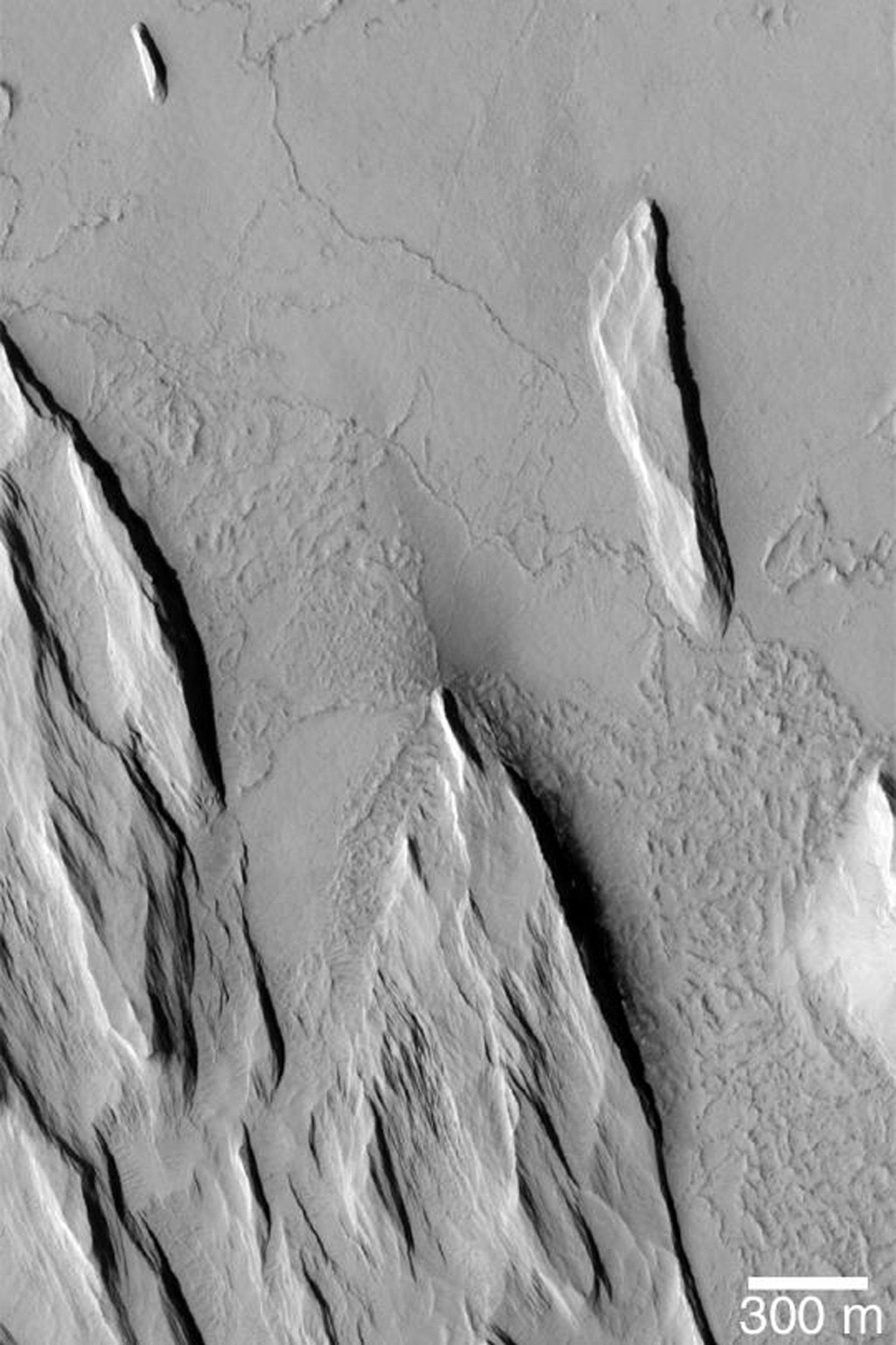 NASA's Mars Global Surveyor shows the results of wind erosion of a thick deposit of fine-grained, cemented material on Mars. The ridges oriented roughly from northwest to southeast are called yardangs.