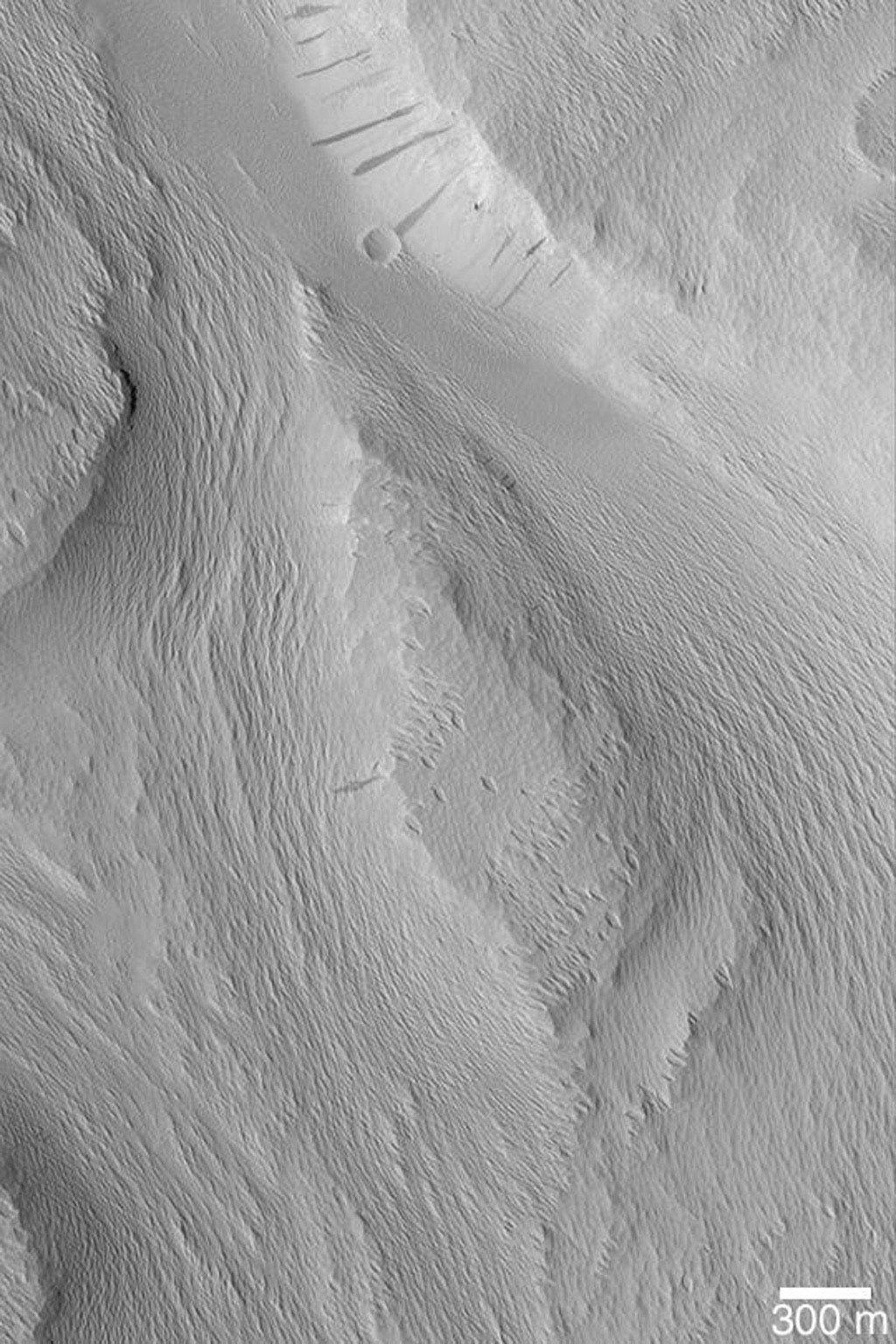 NASA's Mars Global Surveyor shows the wind-eroded surfaces of the Labou Vallis system on Mars. The original valley walls and floor were covered with a material that was later eroded by wind to form the sharp, rough textured terrain present here.