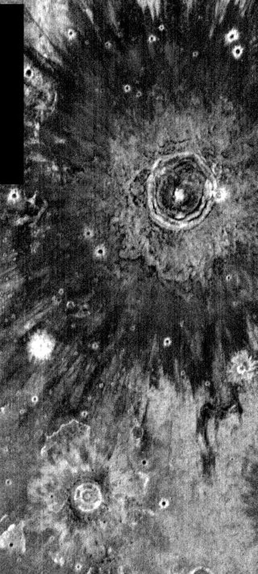 This image, part of an images as art series from NASA's 2001 Mars Odyssey released on Feb 20, 2004 shows crater ejecta on Mars resembling blooming flowers.