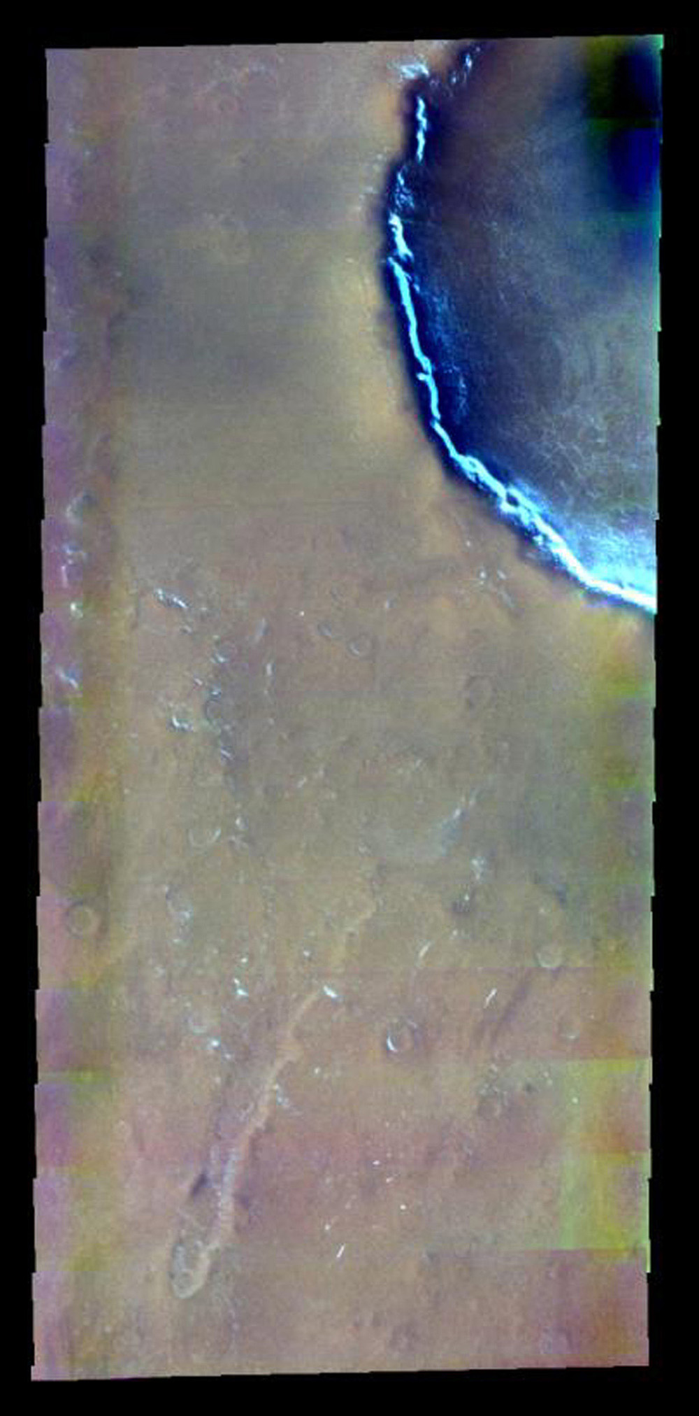 This false-color image from NASA's 2001 Mars Odyssey released on April 30, 2004 shows the martian surface during the northern spring season in Vastitas Borealis.