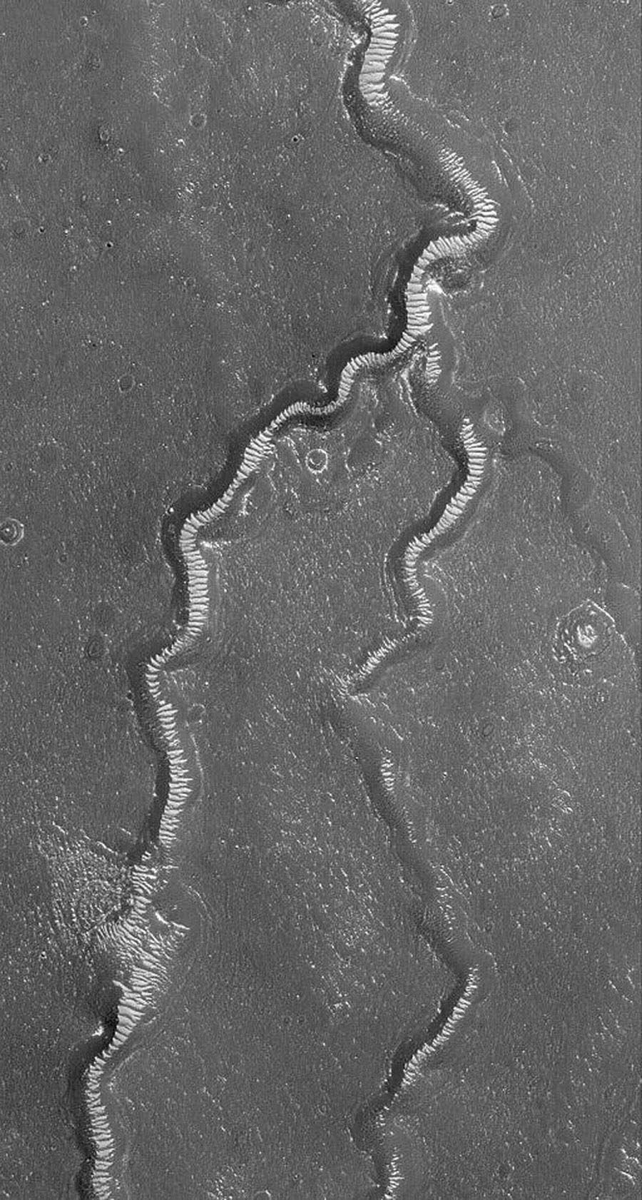 NASA's Mars Global Surveyor shows light-toned, windblown ripples on the floors of channels of the Apsus Vallis system on Mars.