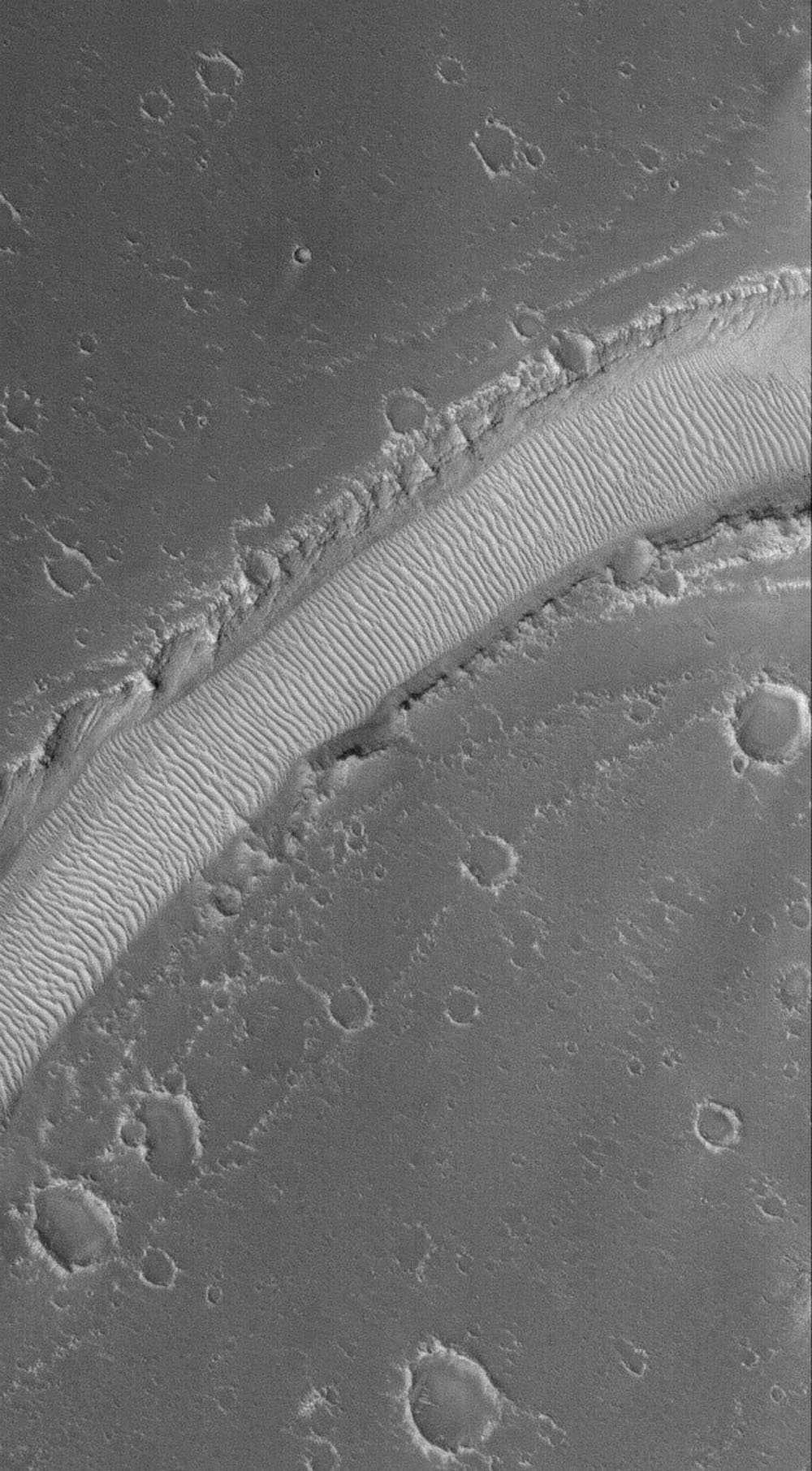NASA's Mars Global Surveyor shows a ripple-covered valley floor in the Hyblaeus Fossae region on Mars. Winds blowing up and down the length of the valley have helped to concentrate windblown grains to form these large, megaripples.