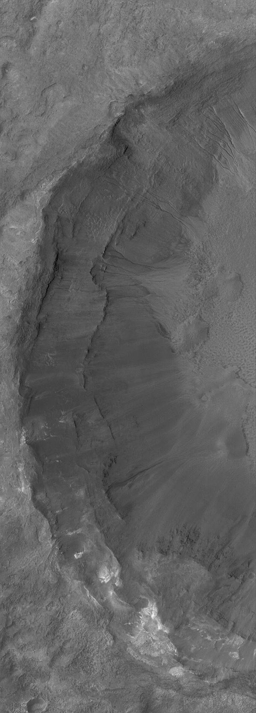 NASA's Mars Global Surveyor shows gullies formed in the terraced wall of an impact crater on the floor of a larger crater on Mars.