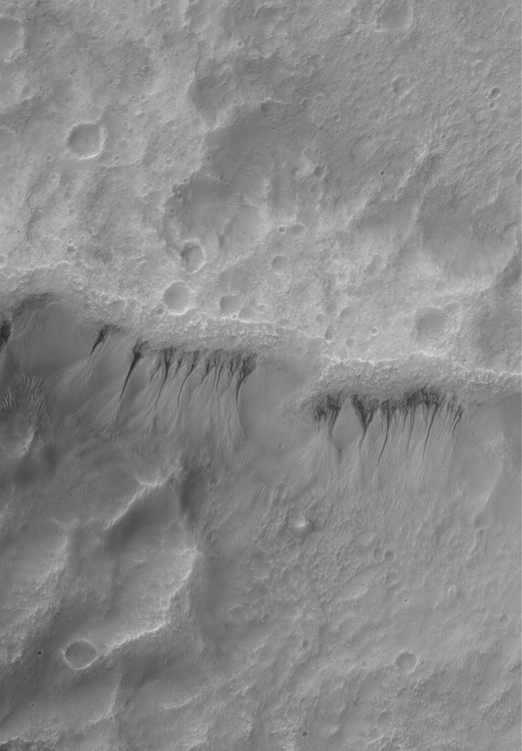 NASA's Mars Global Surveyor shows a gullied crater wall on Mars. The gullies have formed in a thick, smooth-surfaced mantle that covers the crater wall.