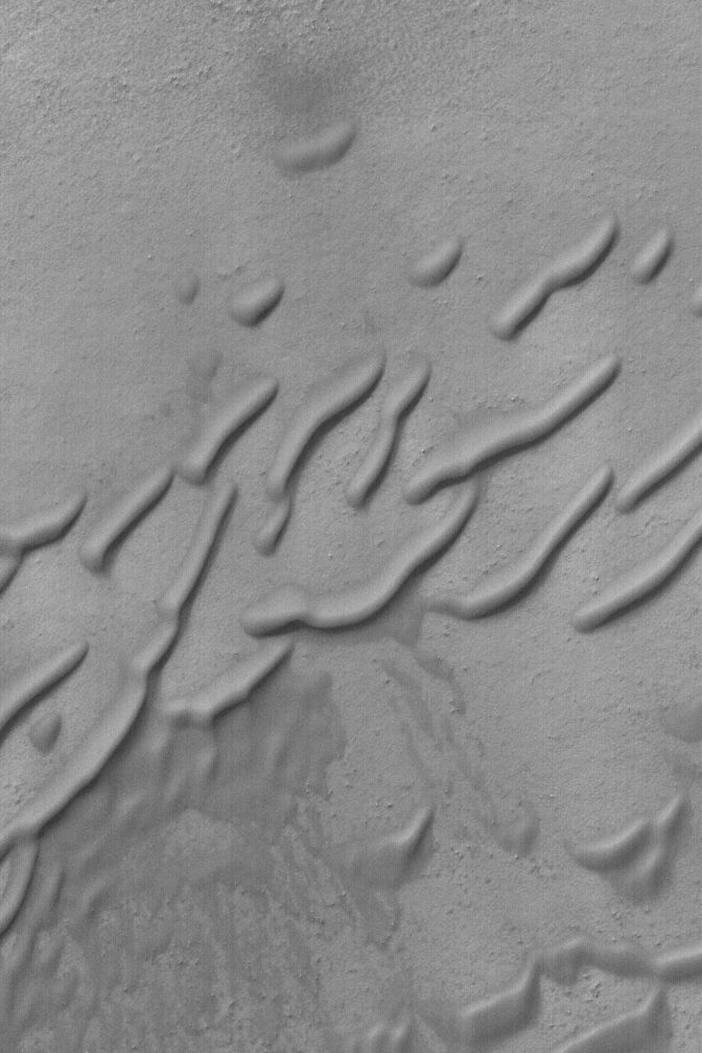 NASA's Mars Global Surveyor shows some of the rounded, wind-eroded sand dune features in a crater in the southern hemisphere of Mars. For such rounding to occur, the dune sand might need to be somewhat cemented.