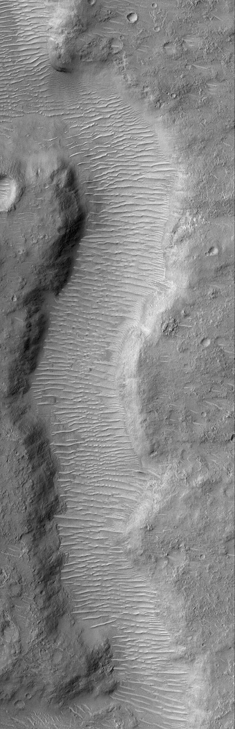 NASA's Mars Global Surveyor shows a small segment of a martian valley on Mars. The valley floor is covered by a plethora of large, windblown ripples.